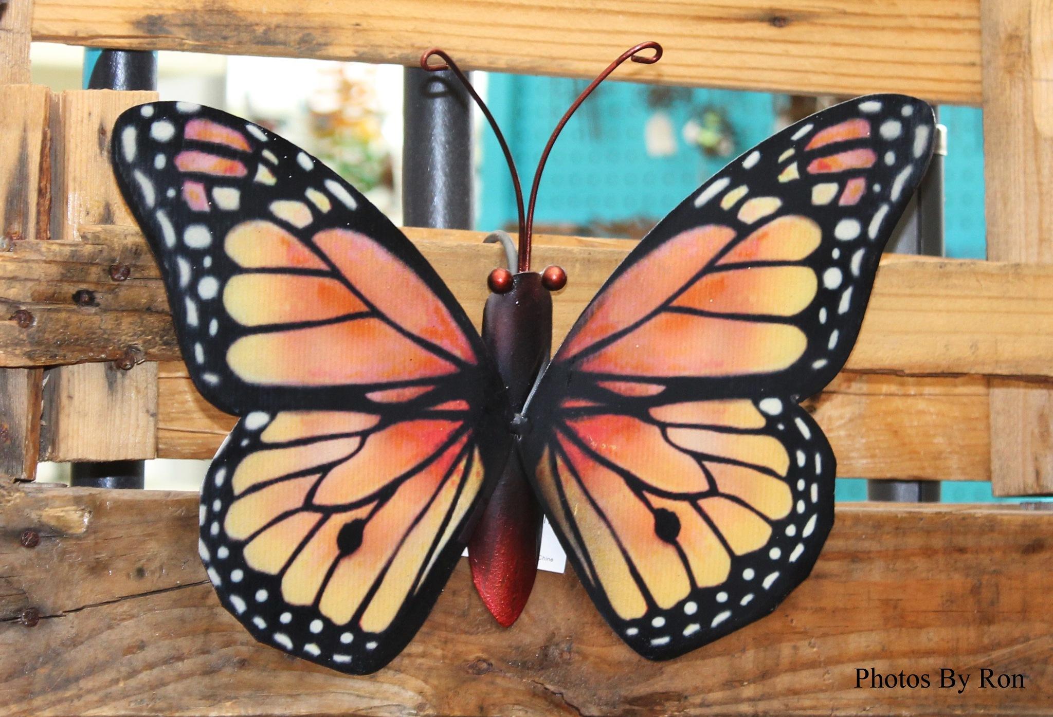 """""""Wild Butterfly""""  by Ron Berkley"""