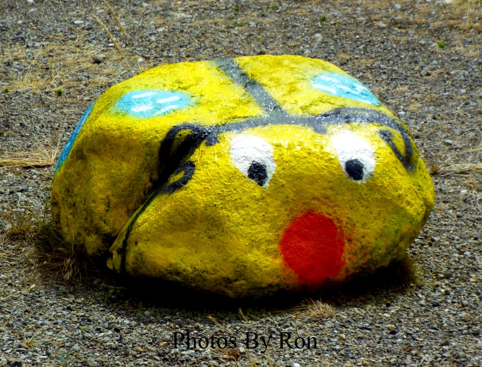 """""""I Must Of Had """"Rocks"""" In My Head To Get Painted Like THIS!!!!"""" by Ron Berkley"""
