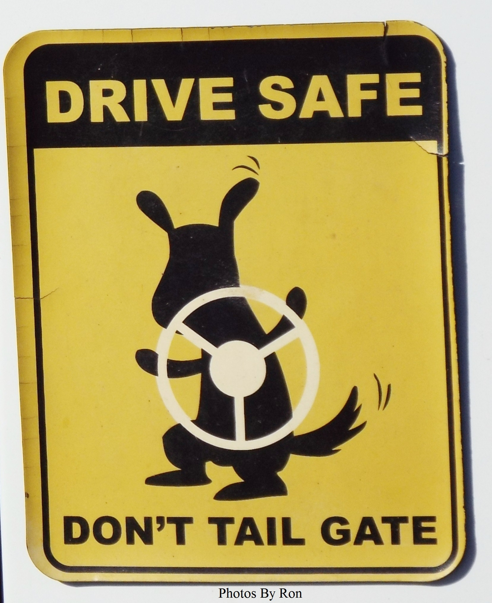 """""""No """"Tail"""" Gating"""" by Ron Berkley"""