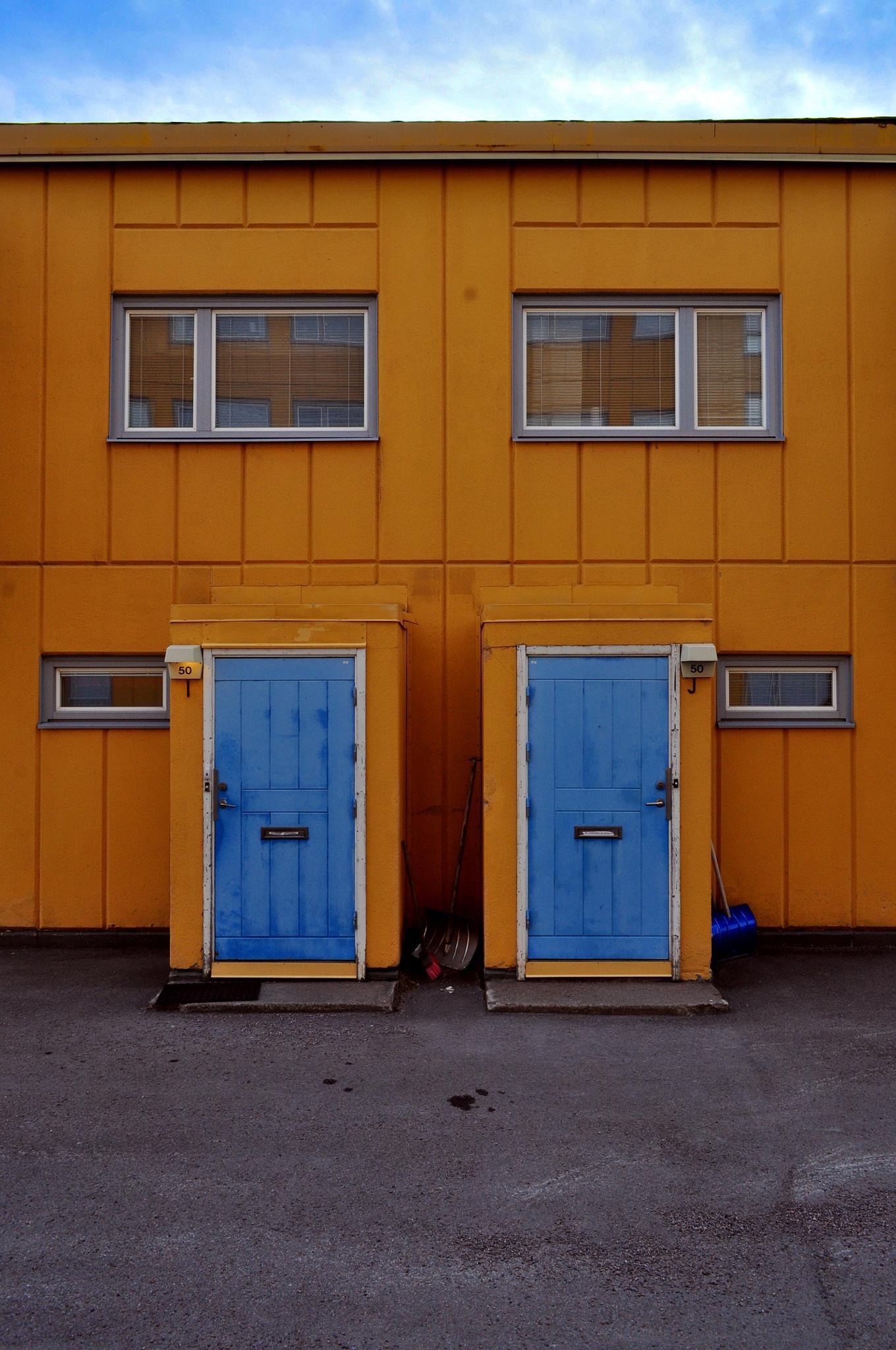 The Twins by ibrahim mahmood