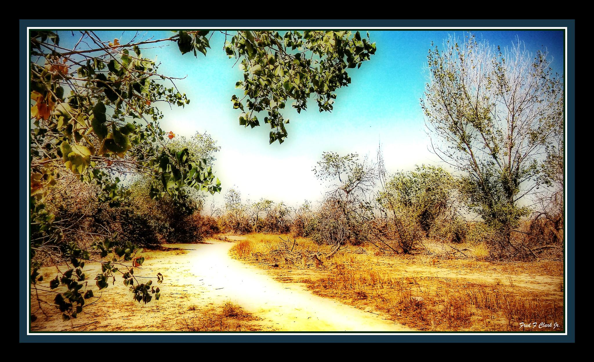 Kern River Trail by fred.clark.359