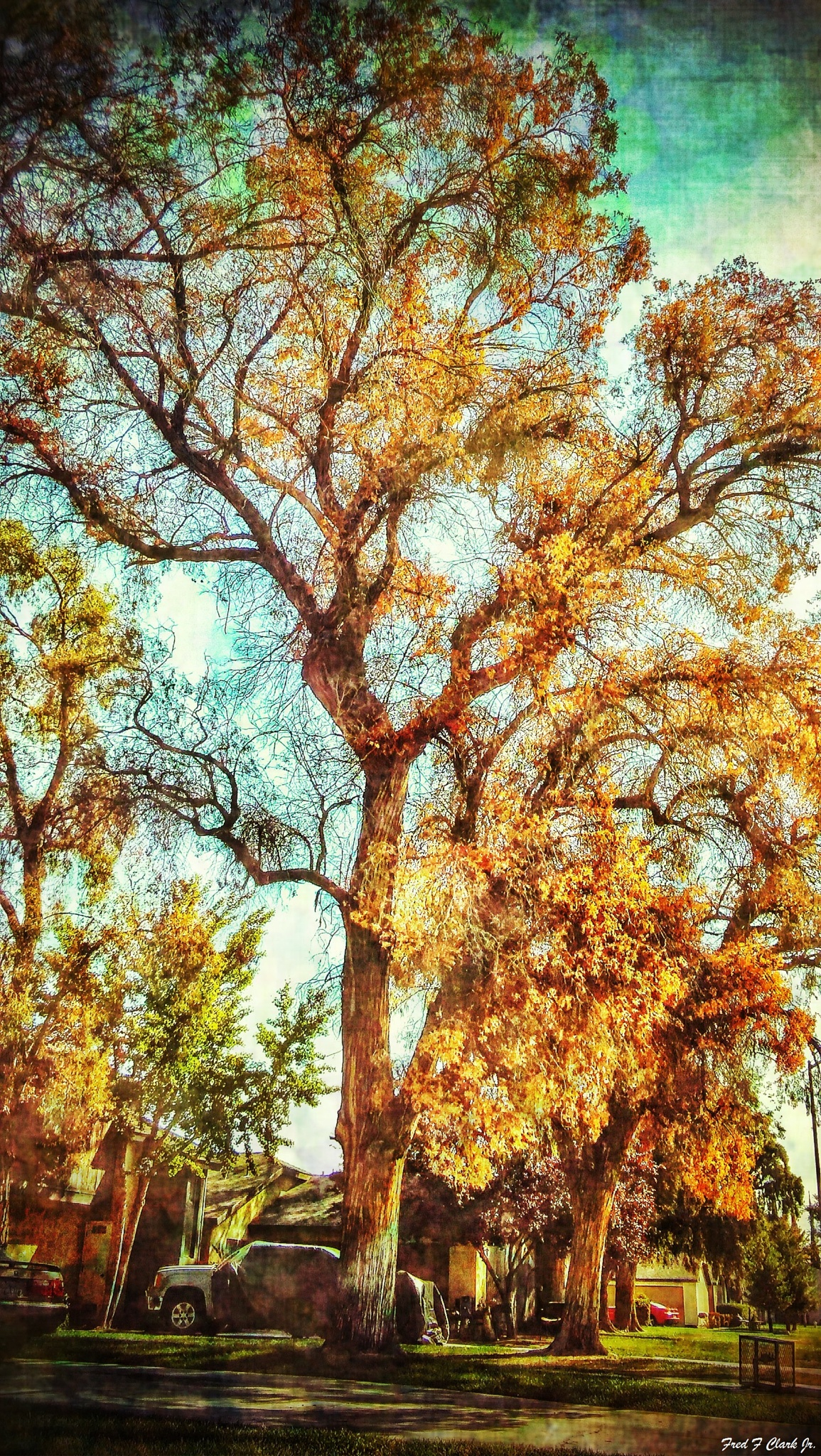 Autumn Is Upon Us by fred.clark.359
