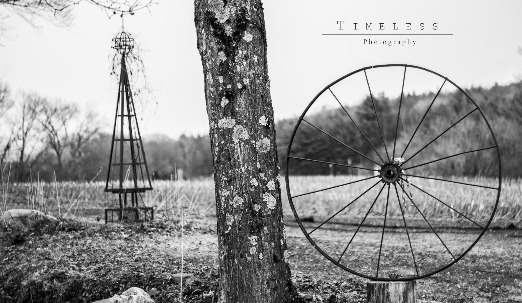 There is art in the country by timelessphotosrk
