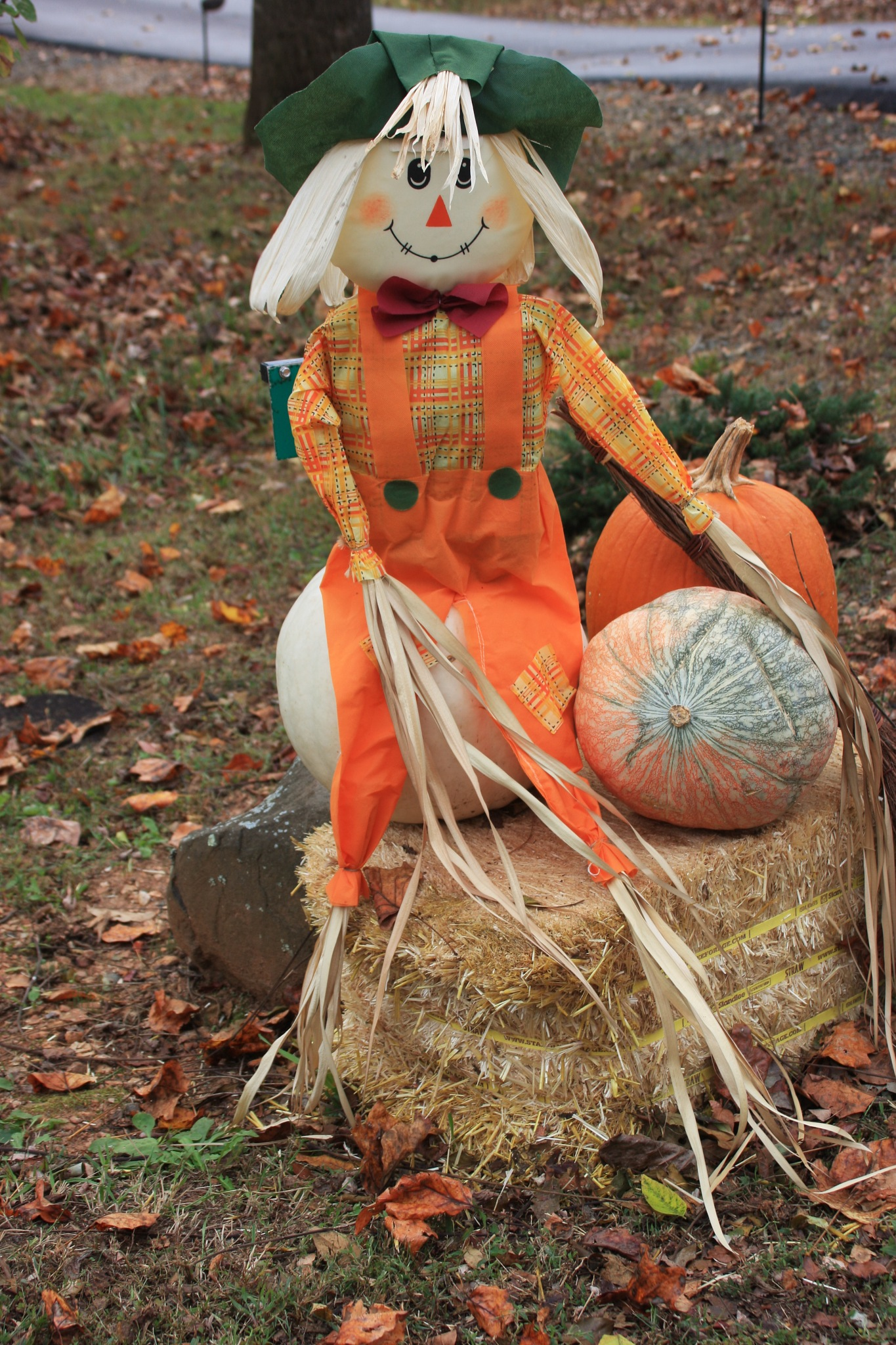 and Halloween is behind the corner by Jaroslav Reznicek
