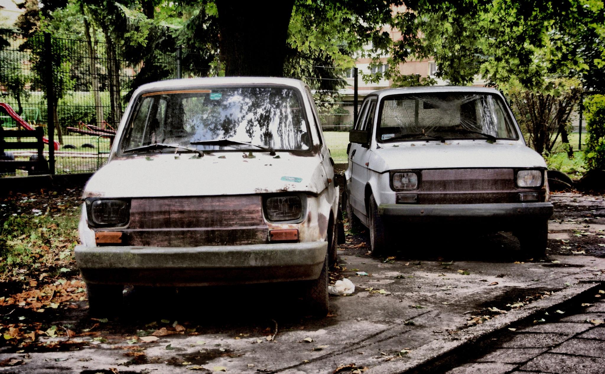 Twins by piotr.b.tubylec