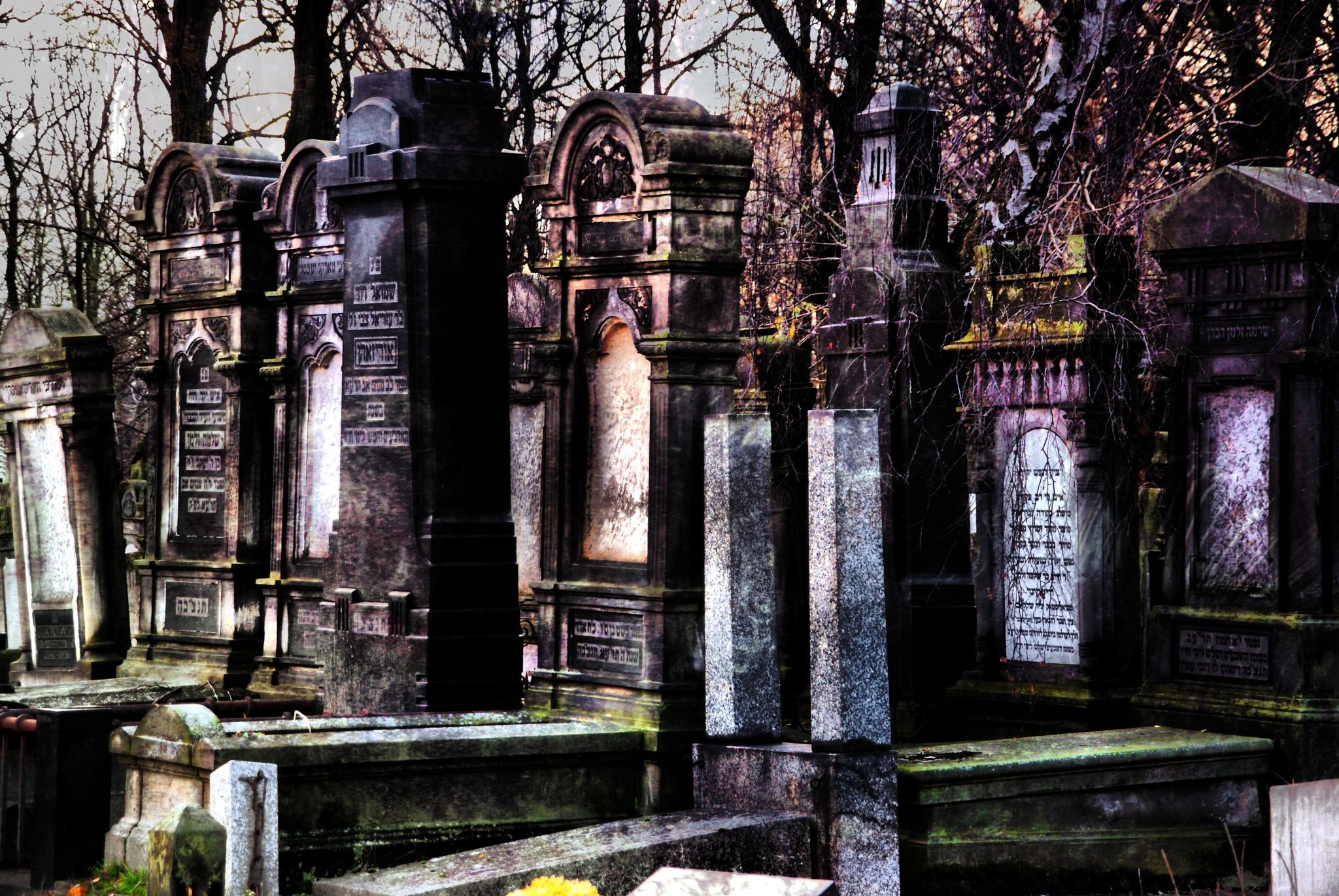 Jewish cemetery in Lodz 3 by piotr.b.tubylec