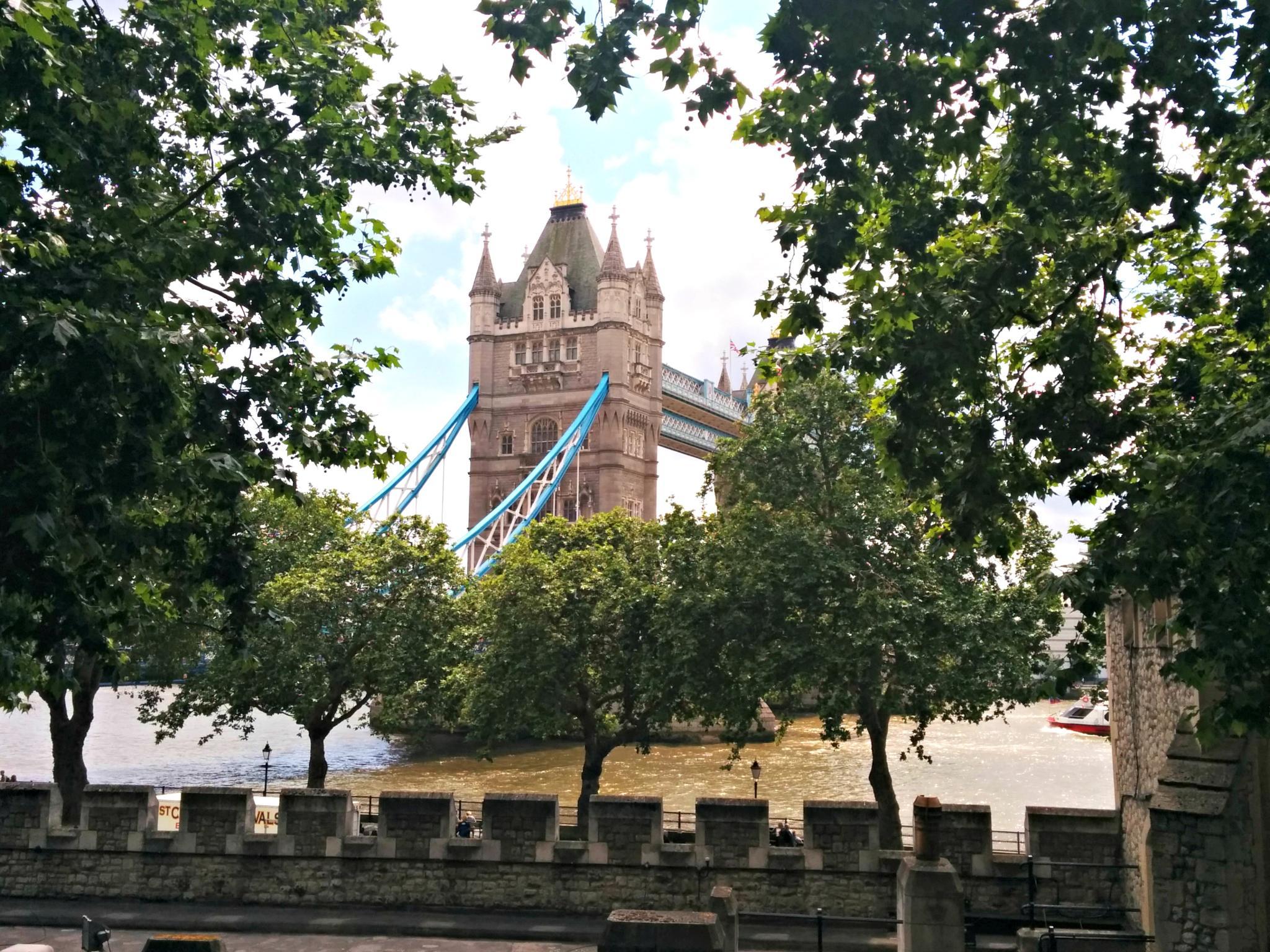Tower Bridge, London by sam medzic
