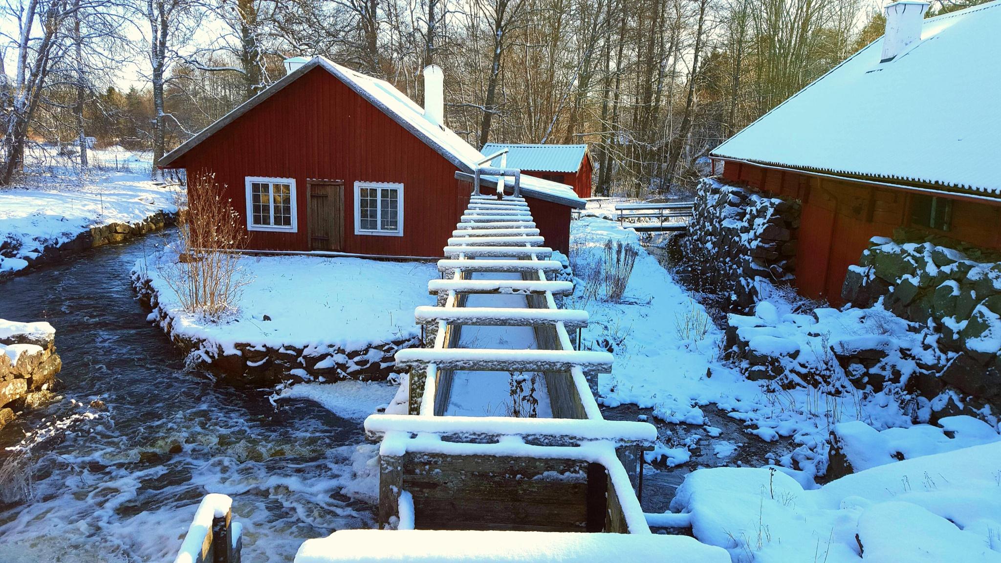 Vinter in Roslagen by Susanne Brännström