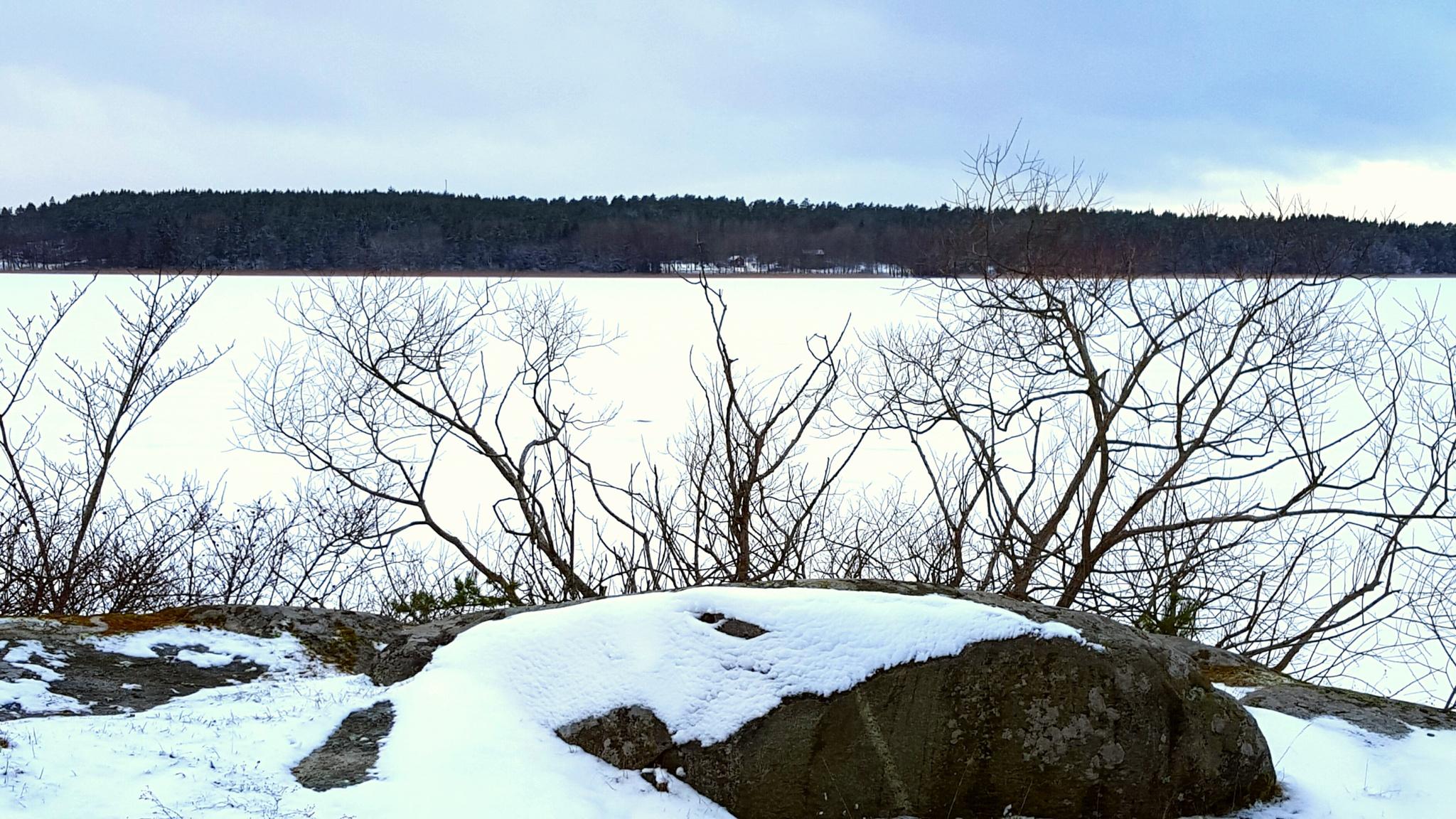 Snow on the lake by Susanne Brännström