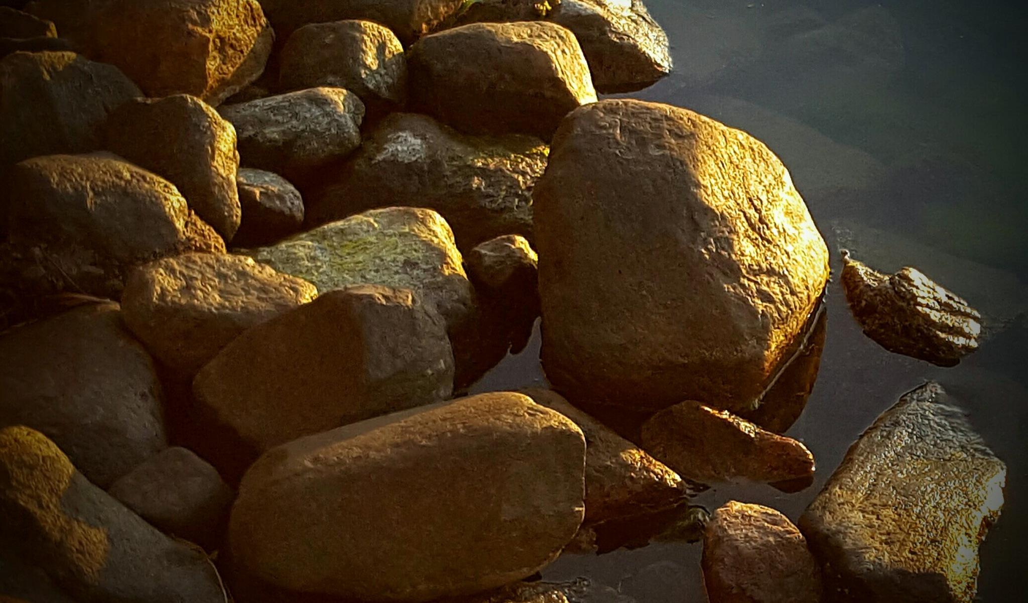 Sunbathing stones by Susanne Brännström