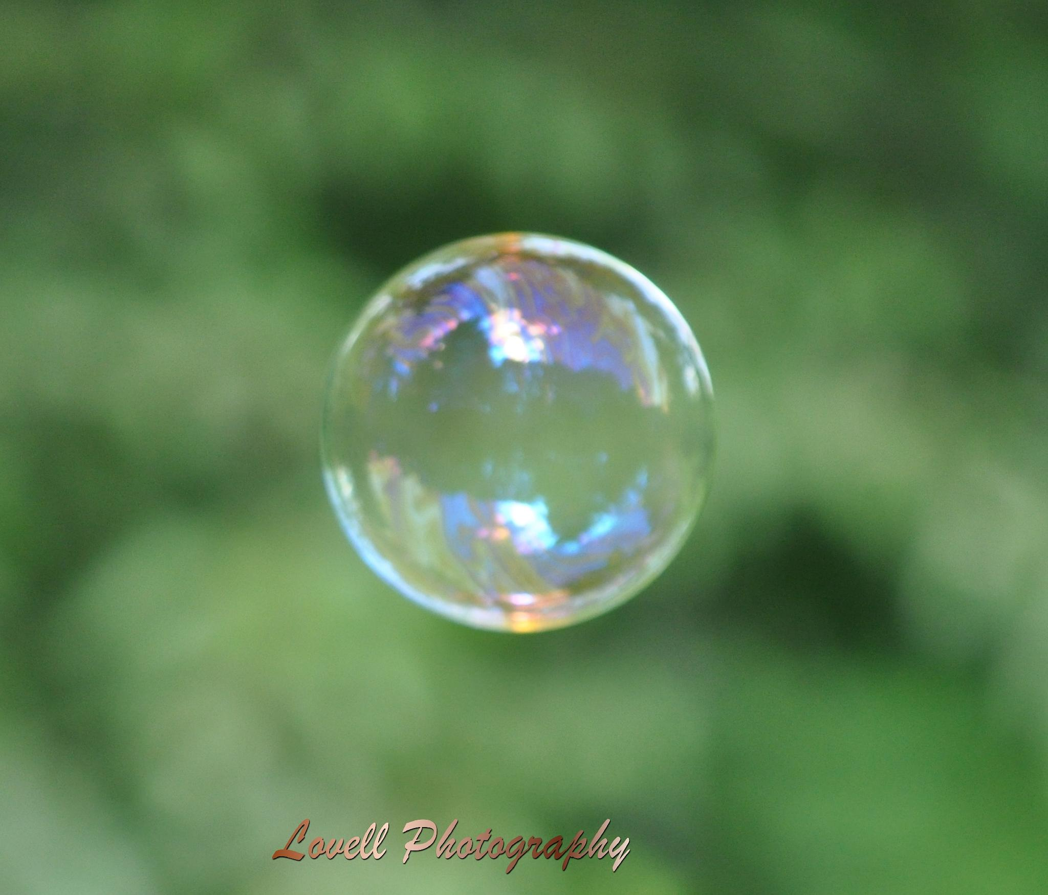 Bubbles by Kendra Lovell