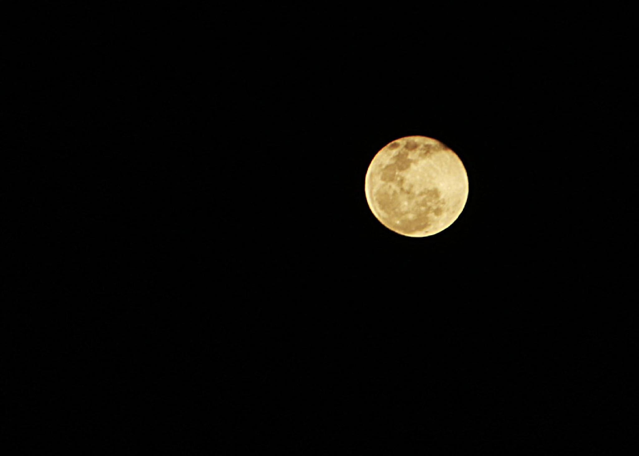 Moon by Sibelle carolina Vargas