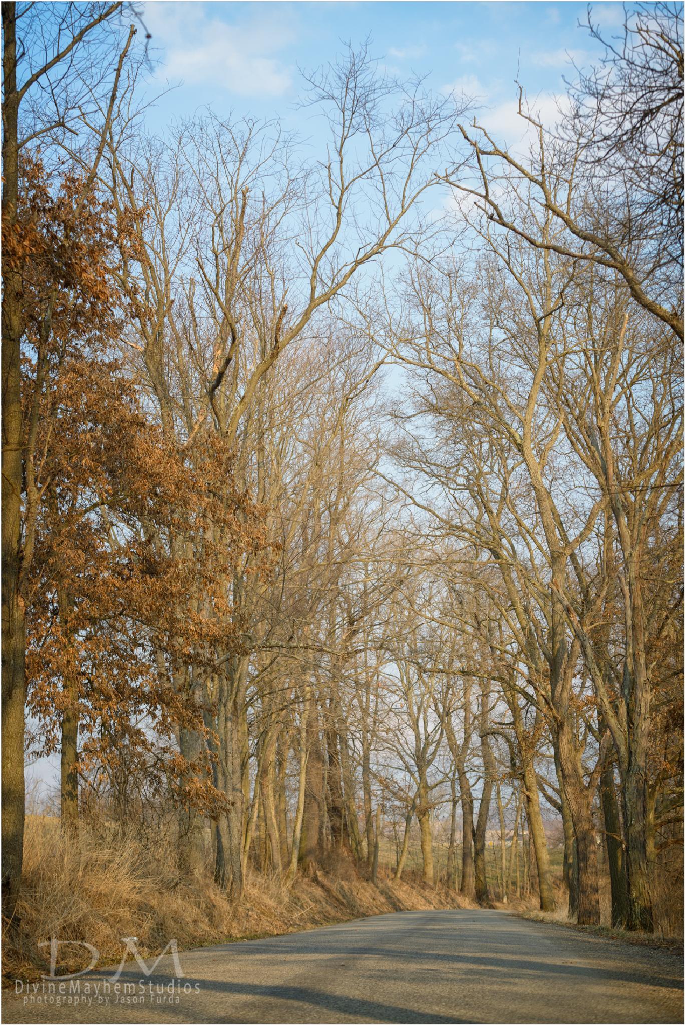 Country Roads by Jason Furda