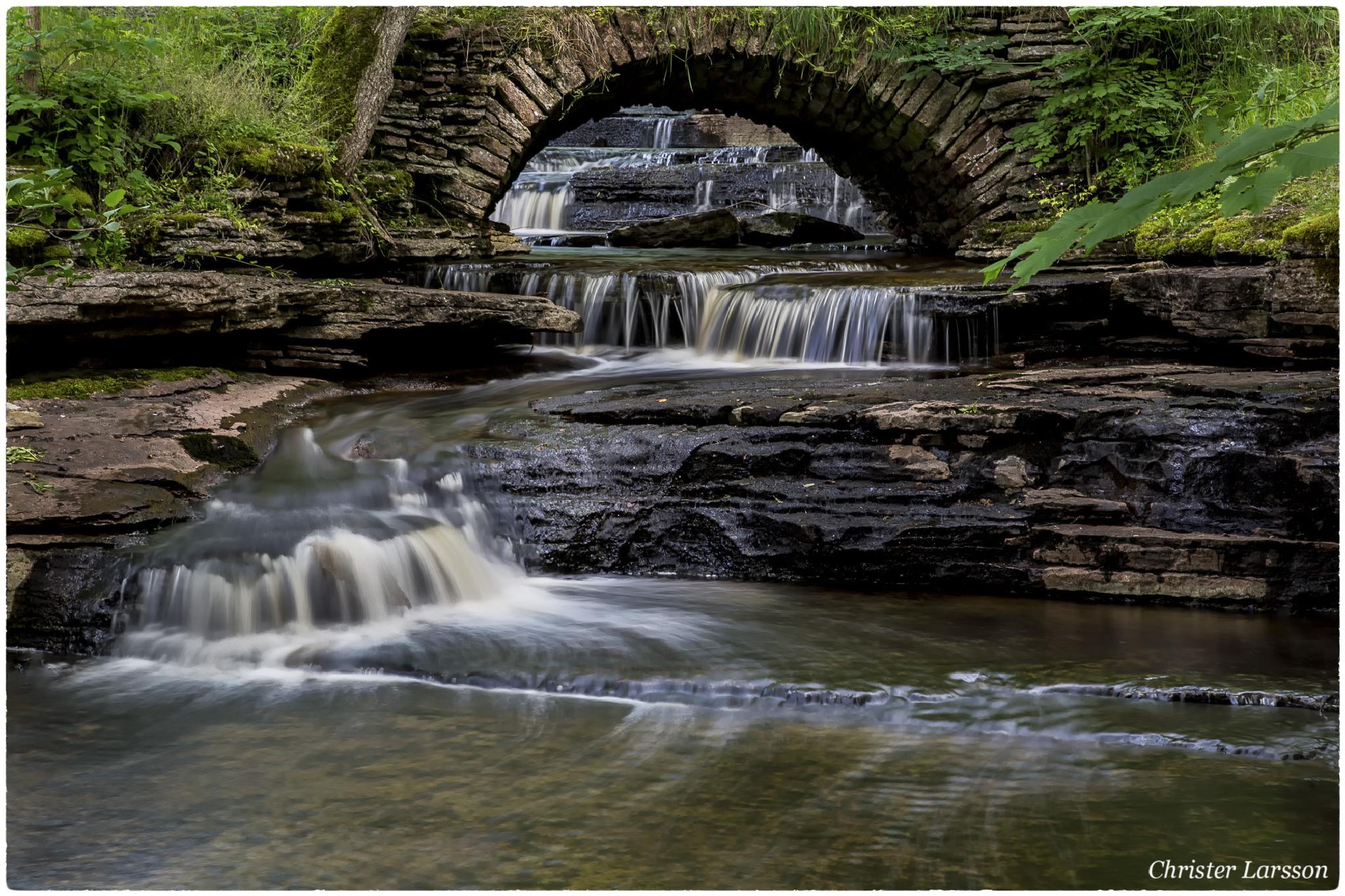 Photo in Landscape #water #bridge #nature