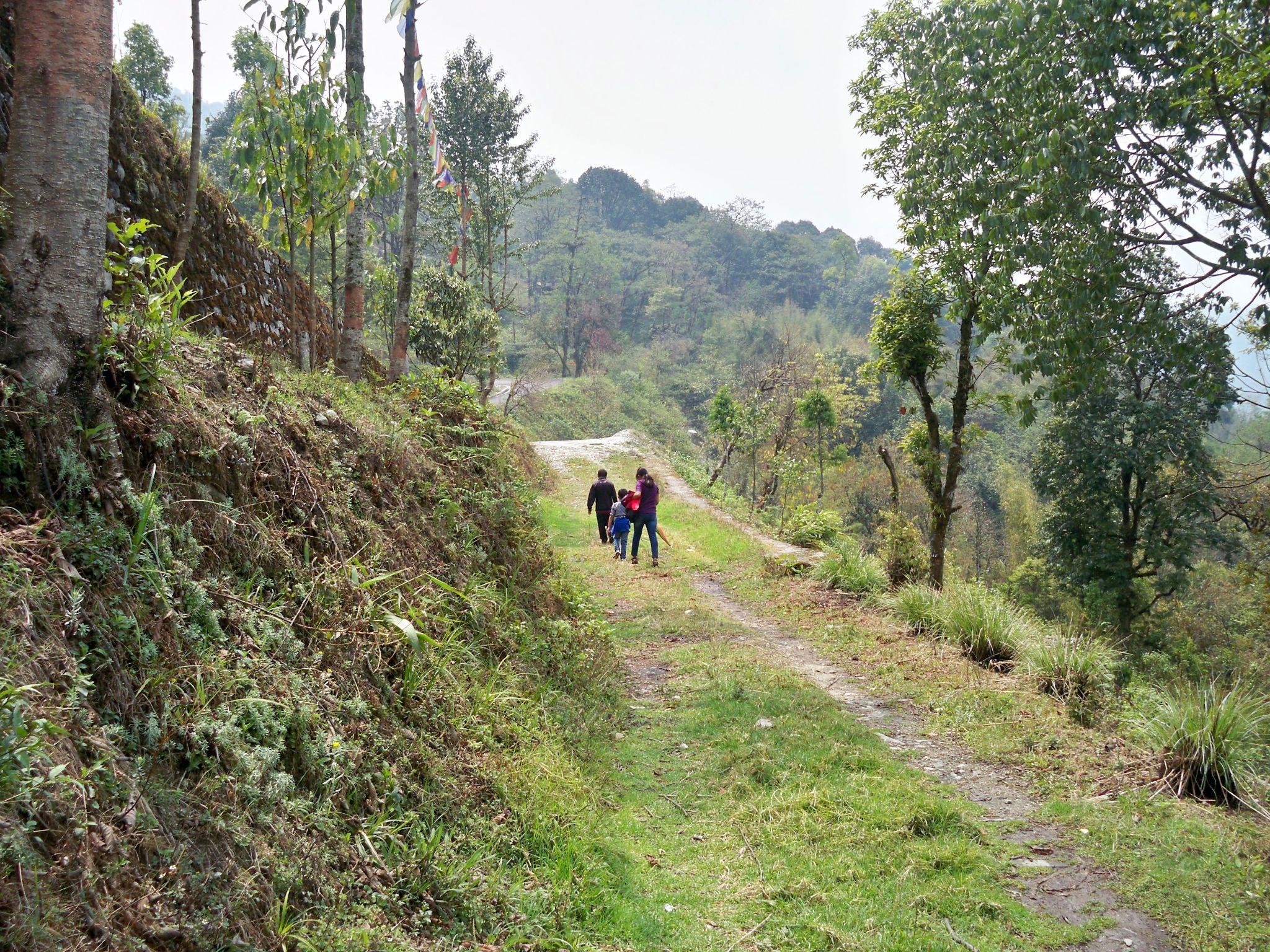 Walking by bodhisatya