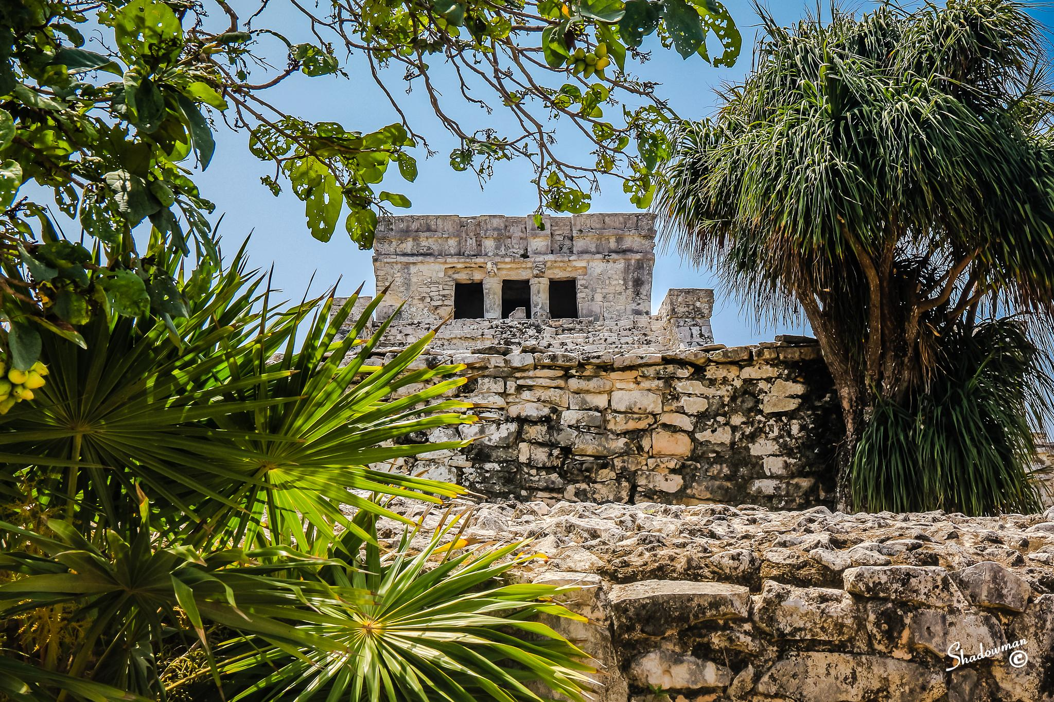 Photo in Travel #mayan #ruins #temple #tulum #mexico