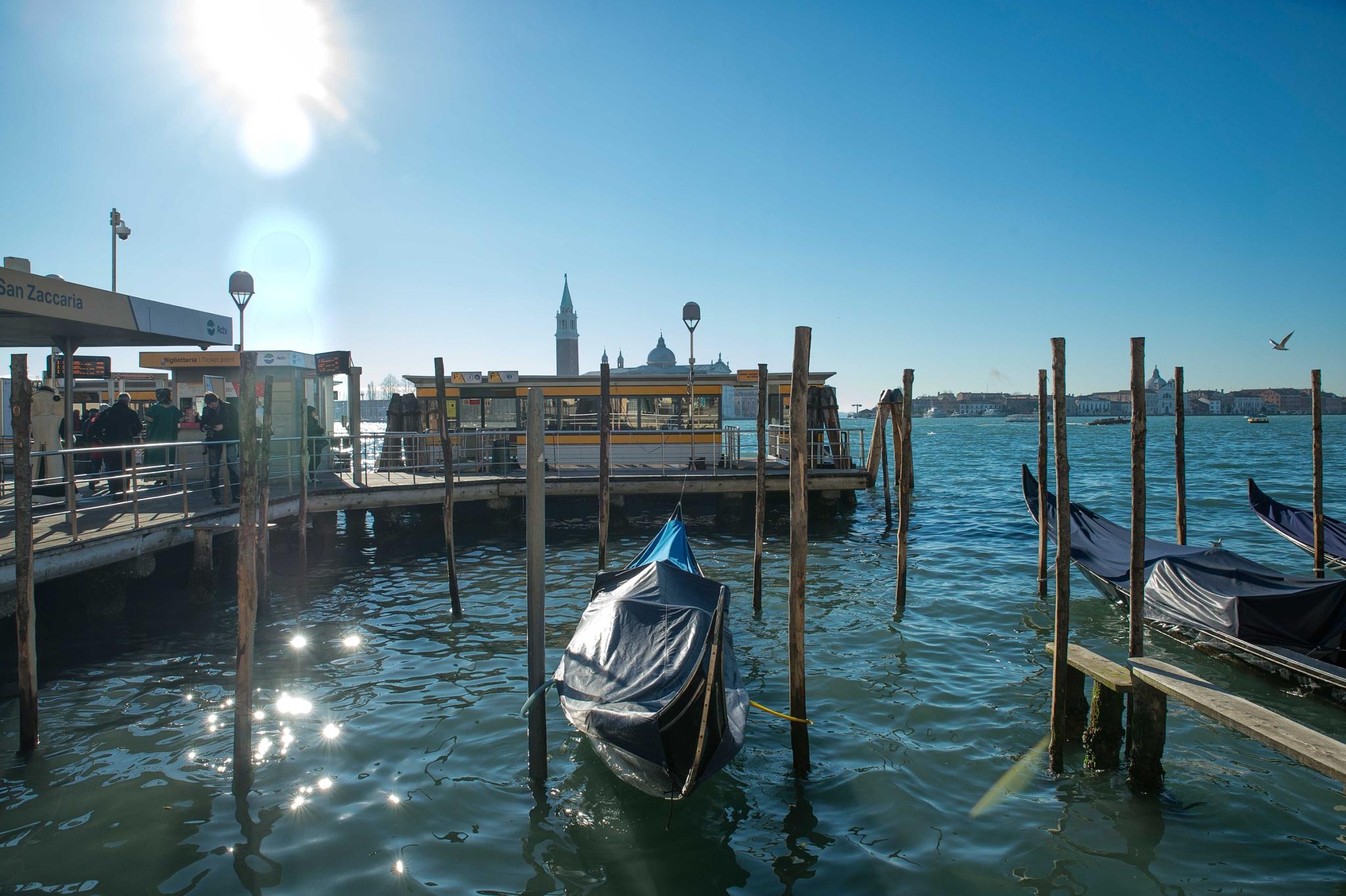 Venezia 2016 by beautiful flower.
