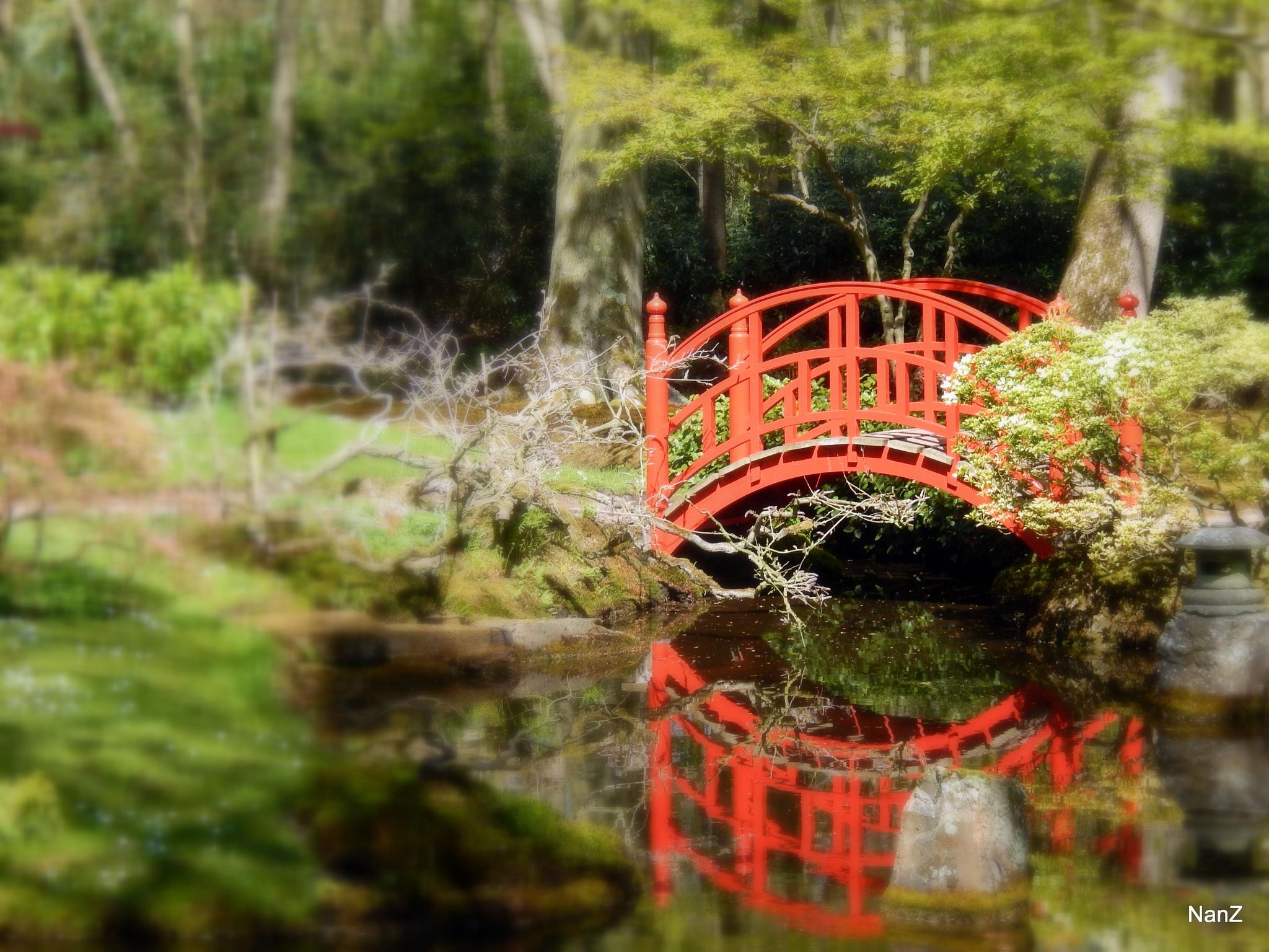 red bridge by Nancy Zuiderwijk