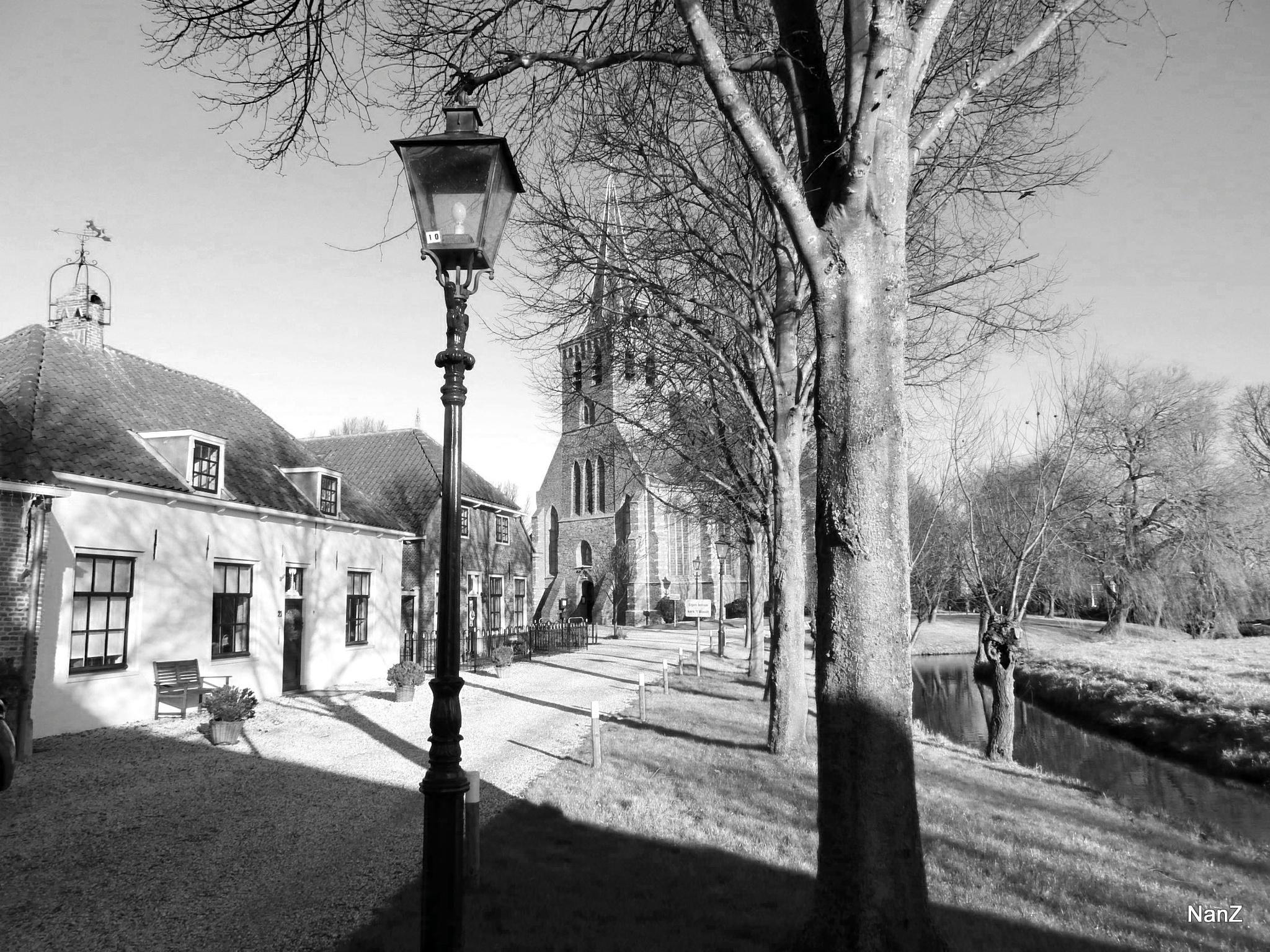 The path by Nancy Zuiderwijk