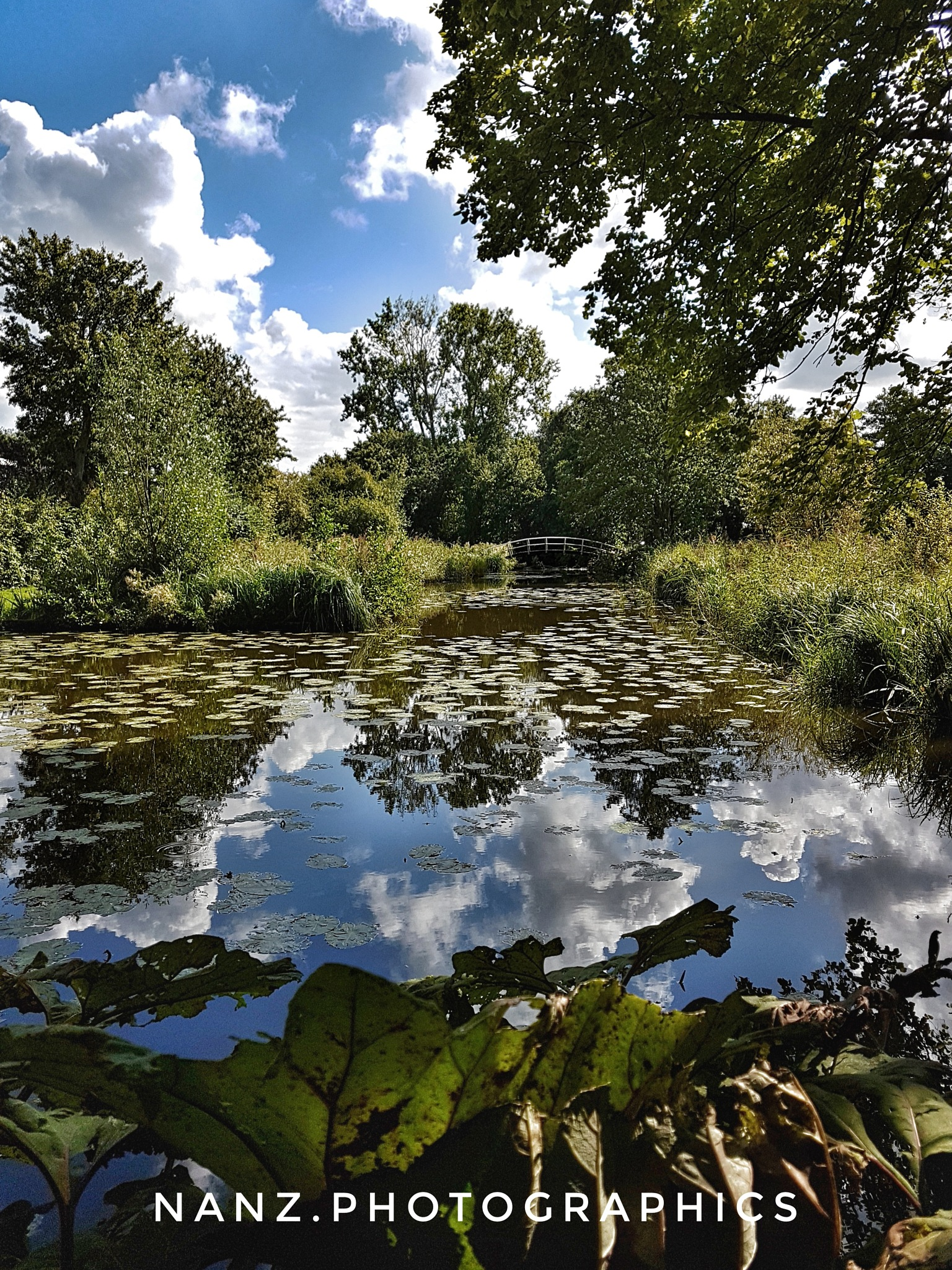 park by Nancy Zuiderwijk