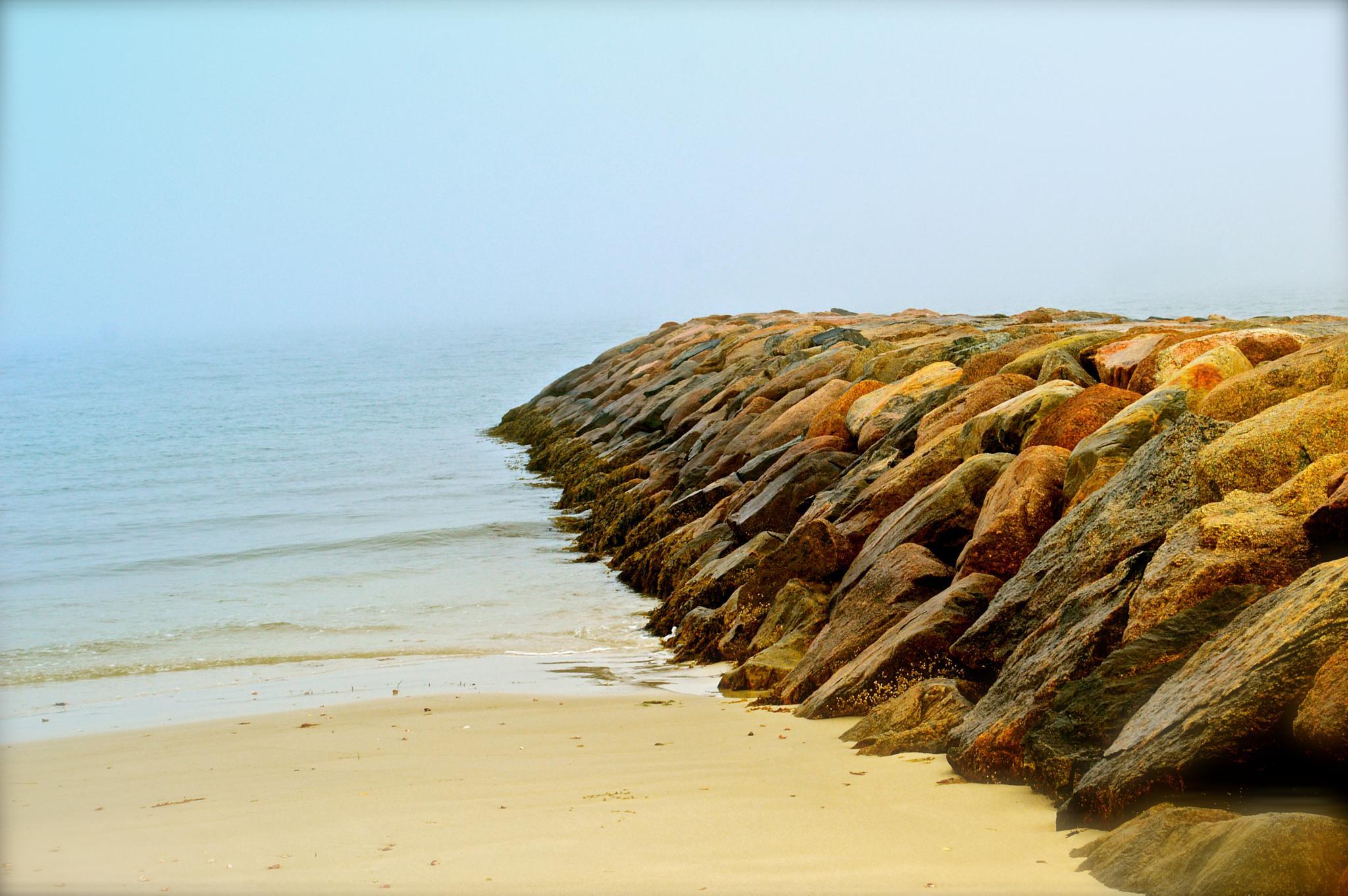 the beach by patti.sebilian