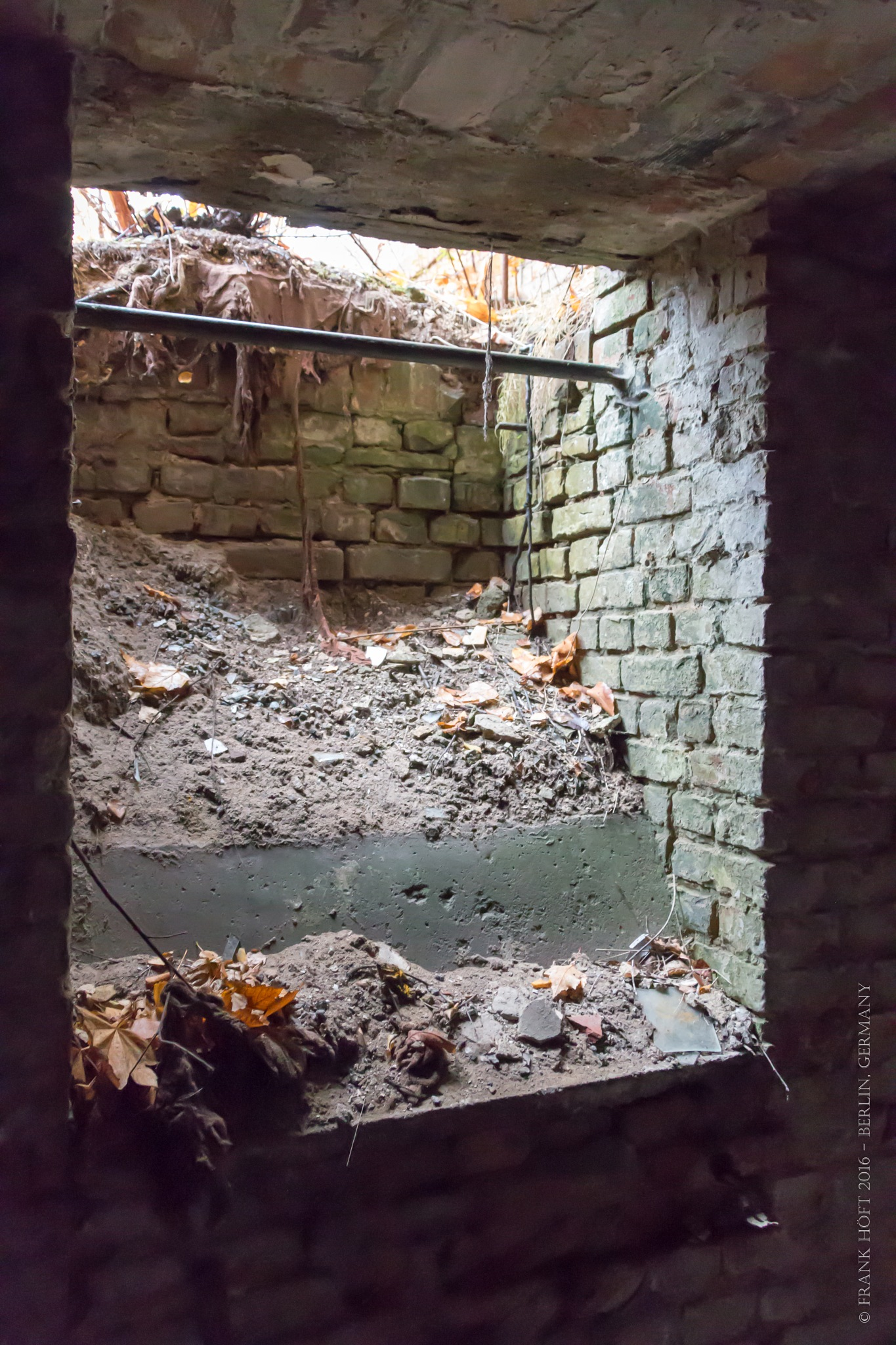 cellar light shaft by Frank Höft