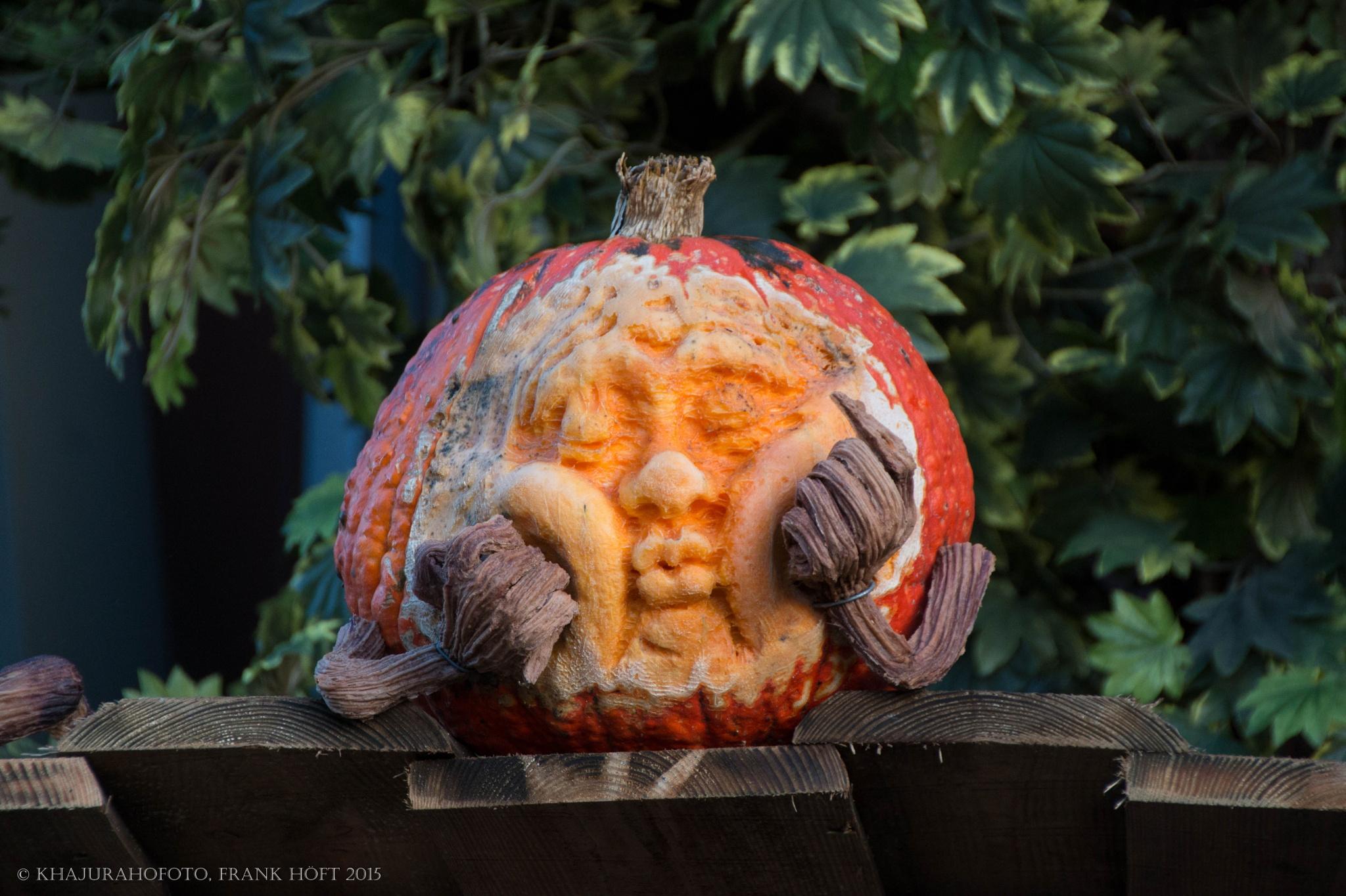 pumpkin and fun by Frank Höft
