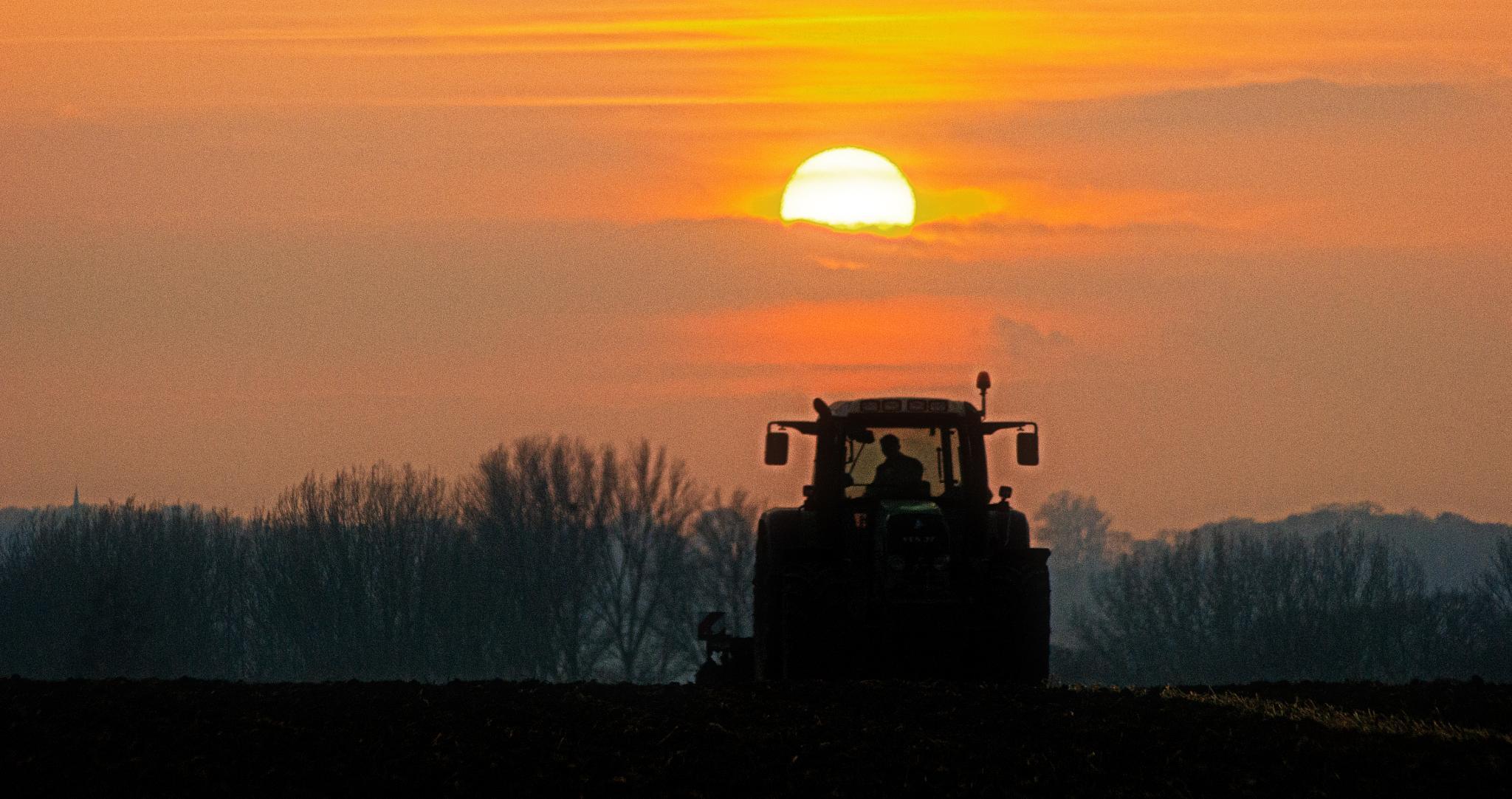Farming by Mary Kouwenhoven