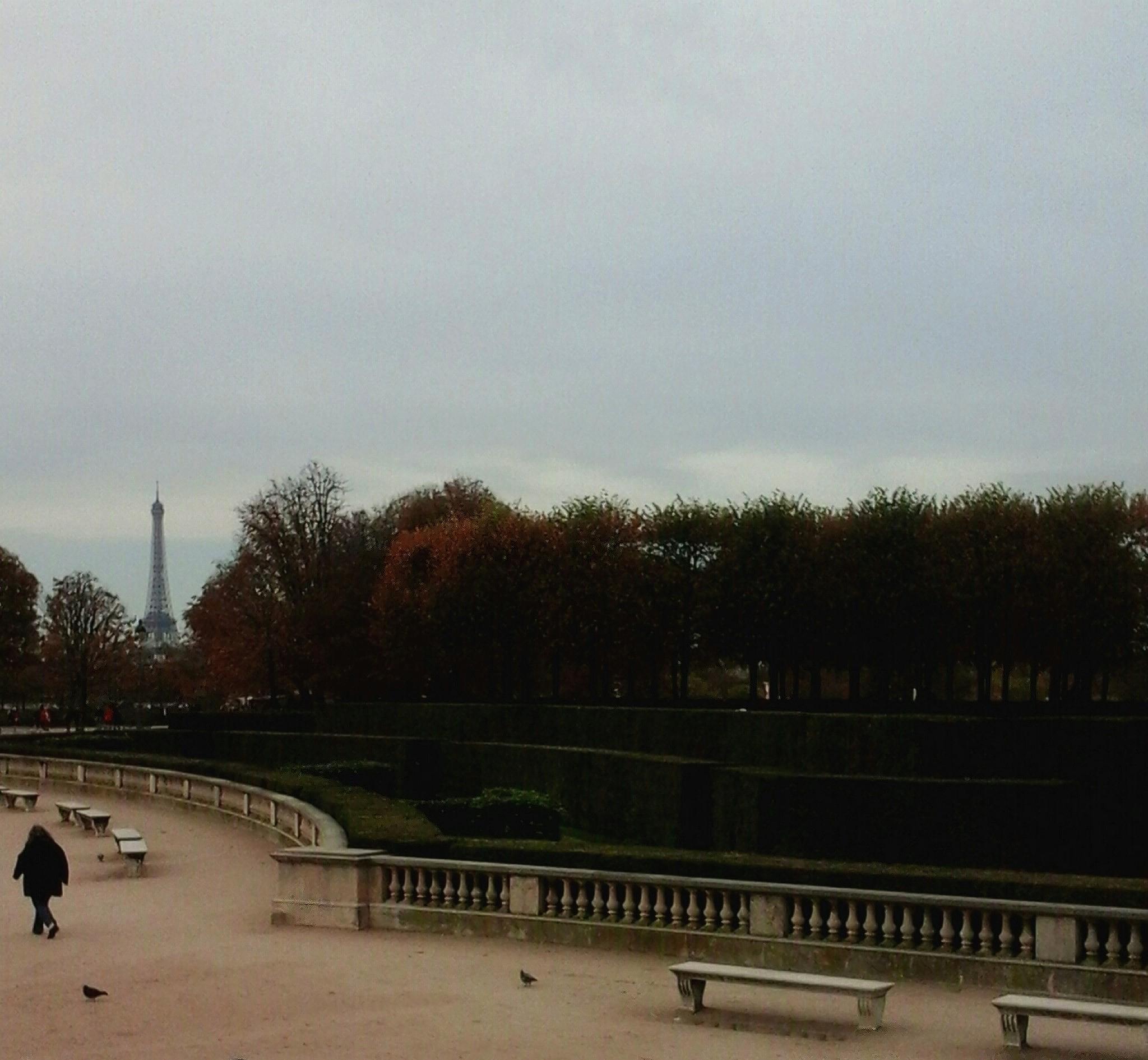 Paris.  by marisa.alcaraz