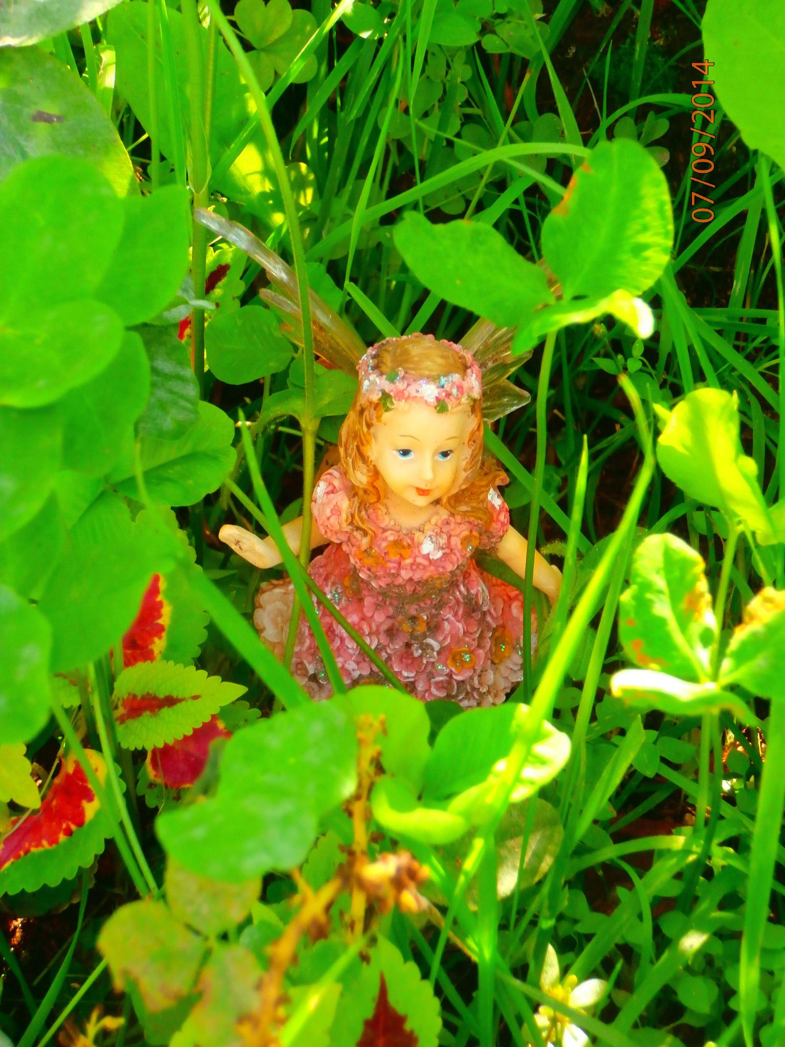 Fairy in clover by tina.linge.3
