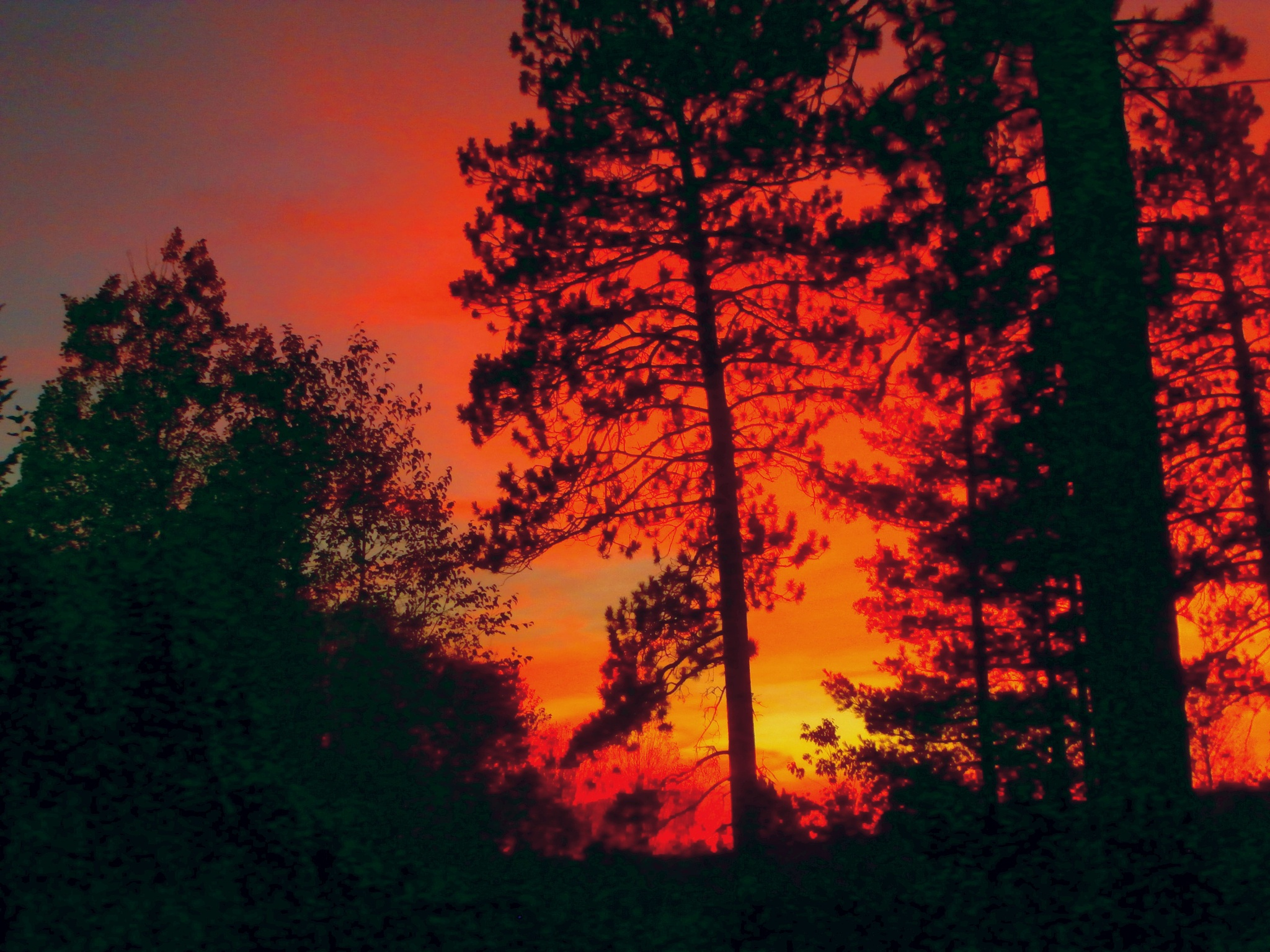 burning sky by tina.linge.3