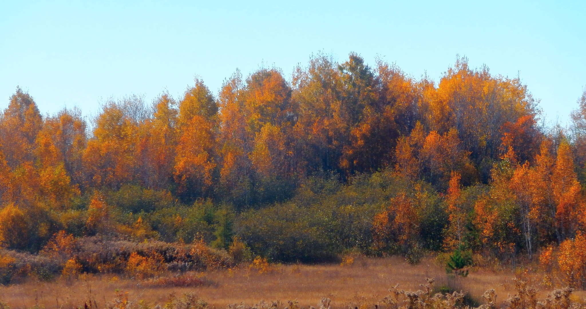 autumn landscape by tina.linge.3