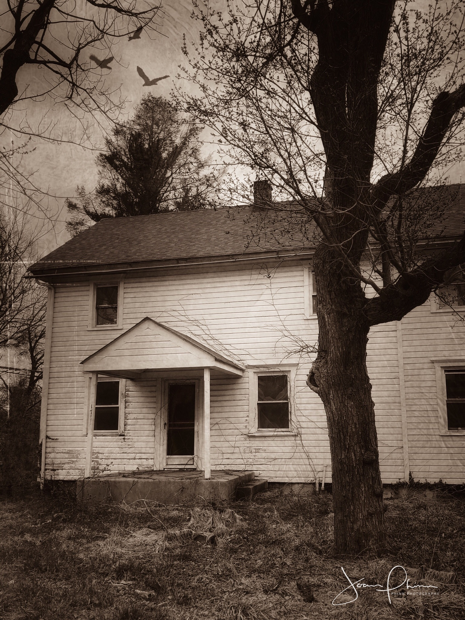 This old house.  by Joan Phinn