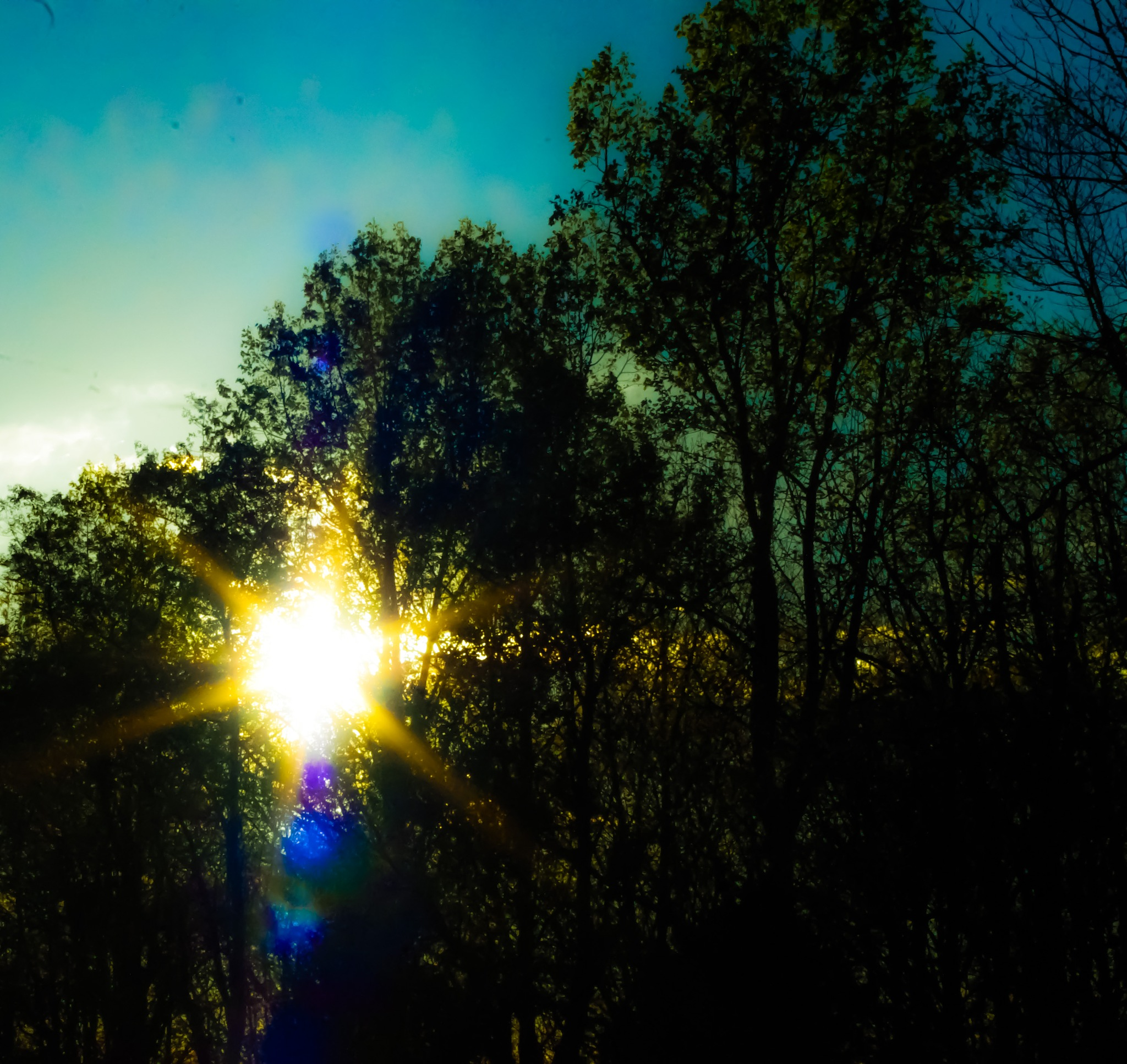 SUN SPOT BABY! by Bonnie Rhoades