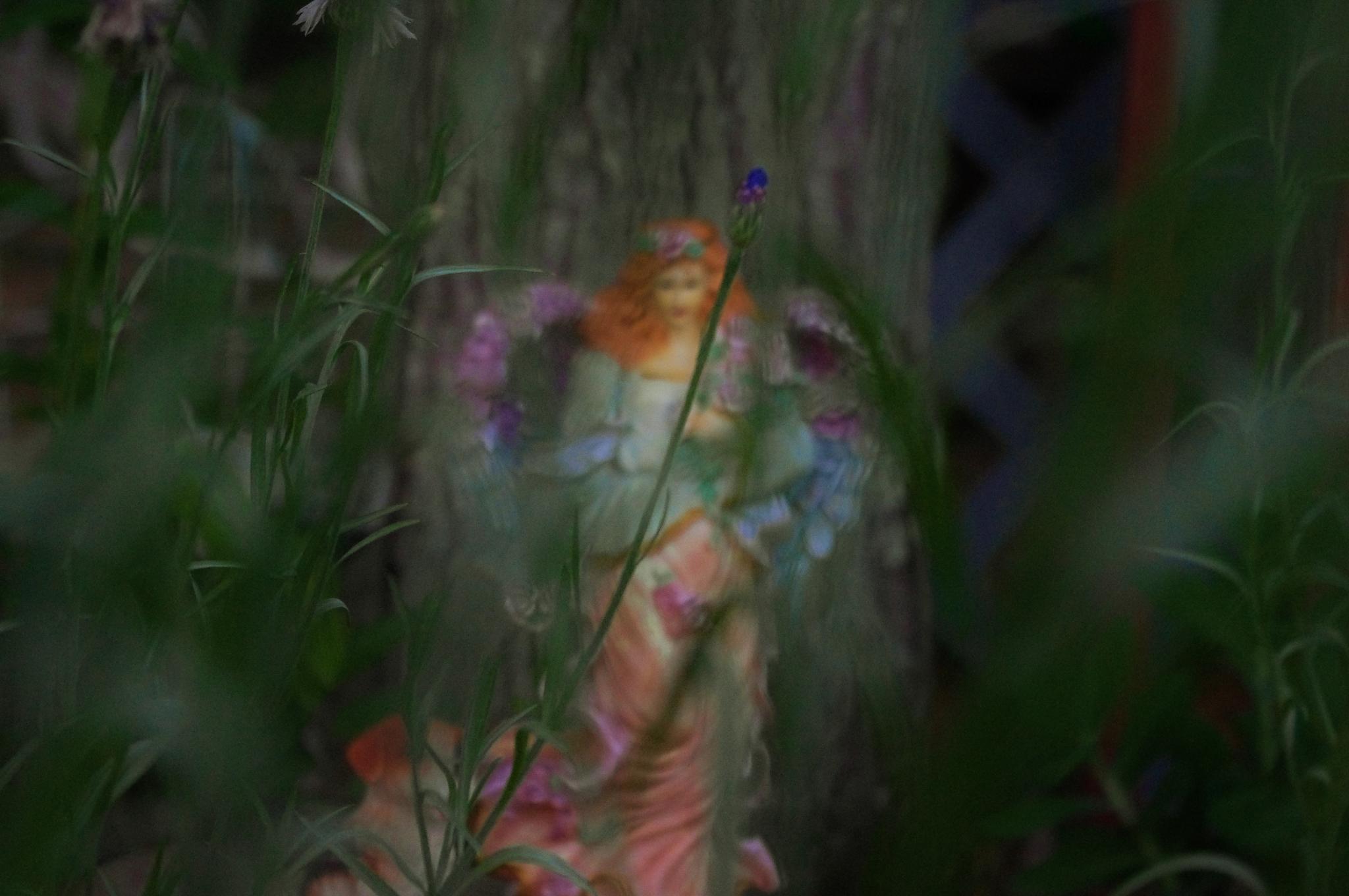 Untitled by Bonnie Rhoades