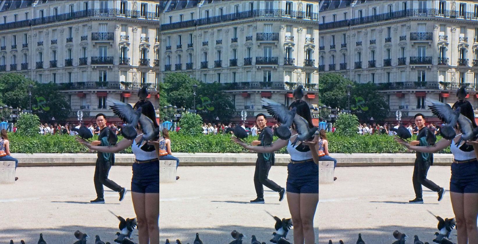 Birds on tourists — Stereoscopy by jacquesraffin