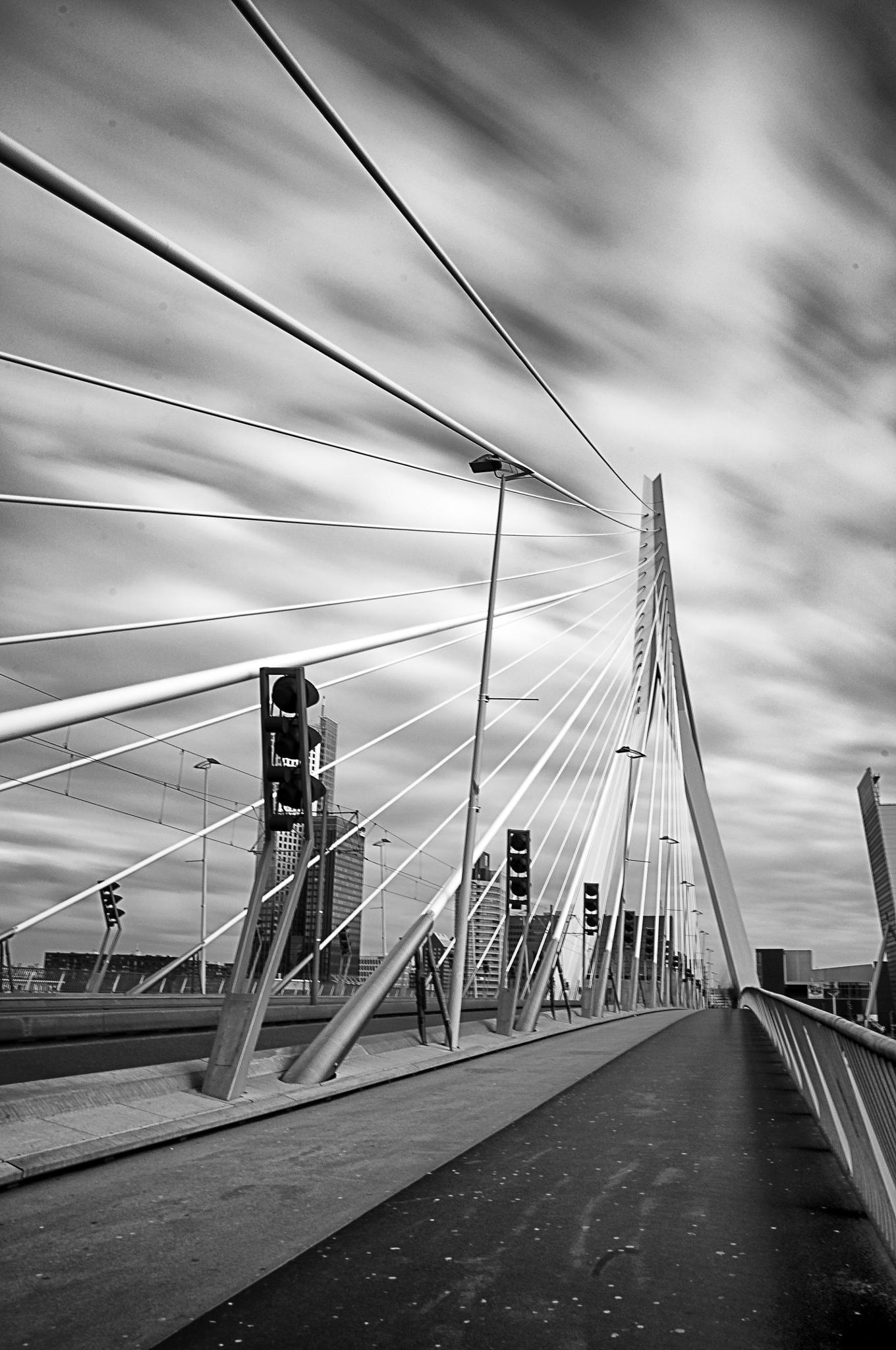 Rotterdam Erasmus bridge by cynowyn