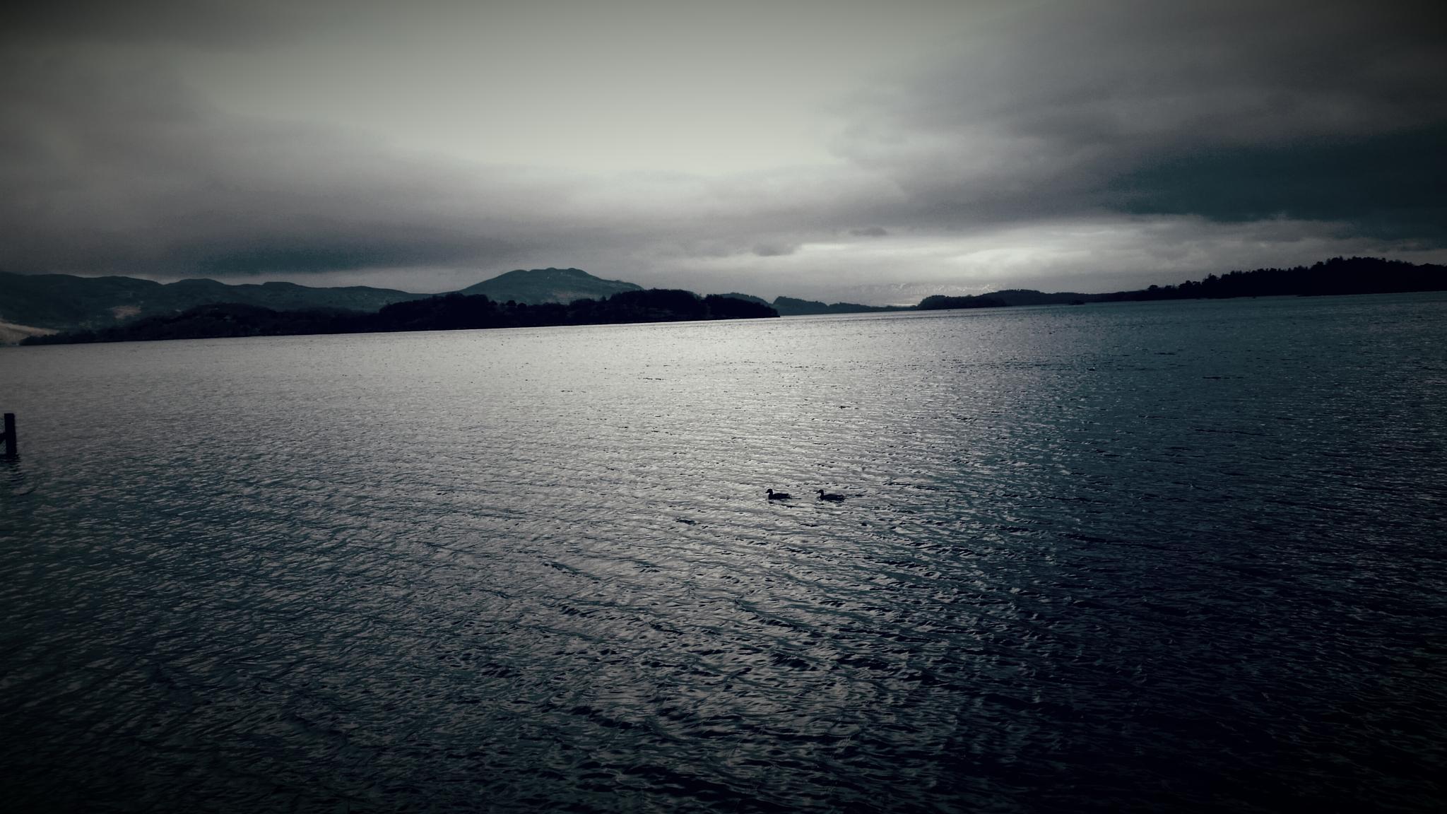 Loch Lomond by sharon campbell