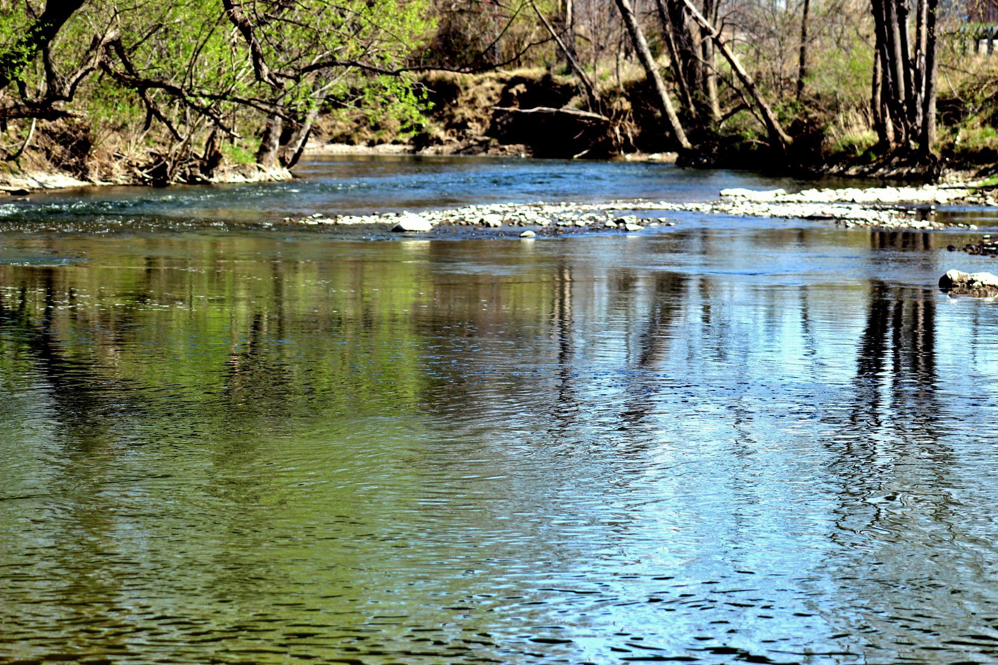 A River Runs Through It by Angela Mead