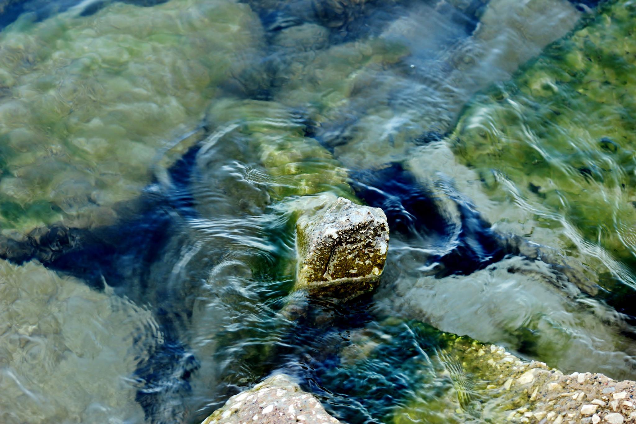 Shoreline by Angela Mead
