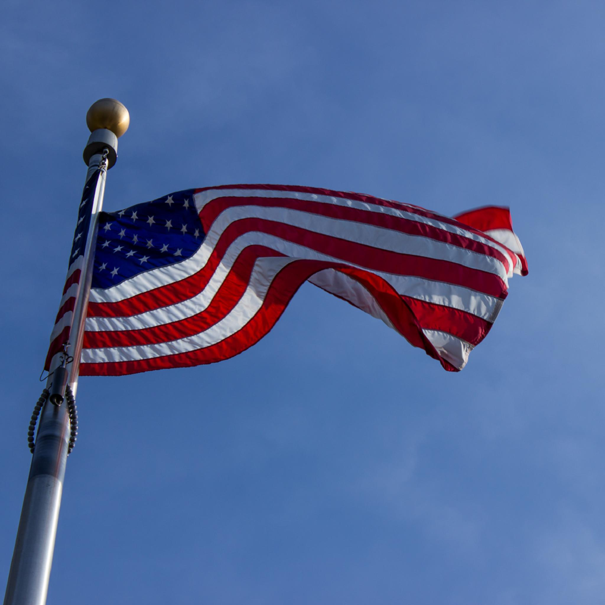 I Pledge Allegiance... by Angela Mead
