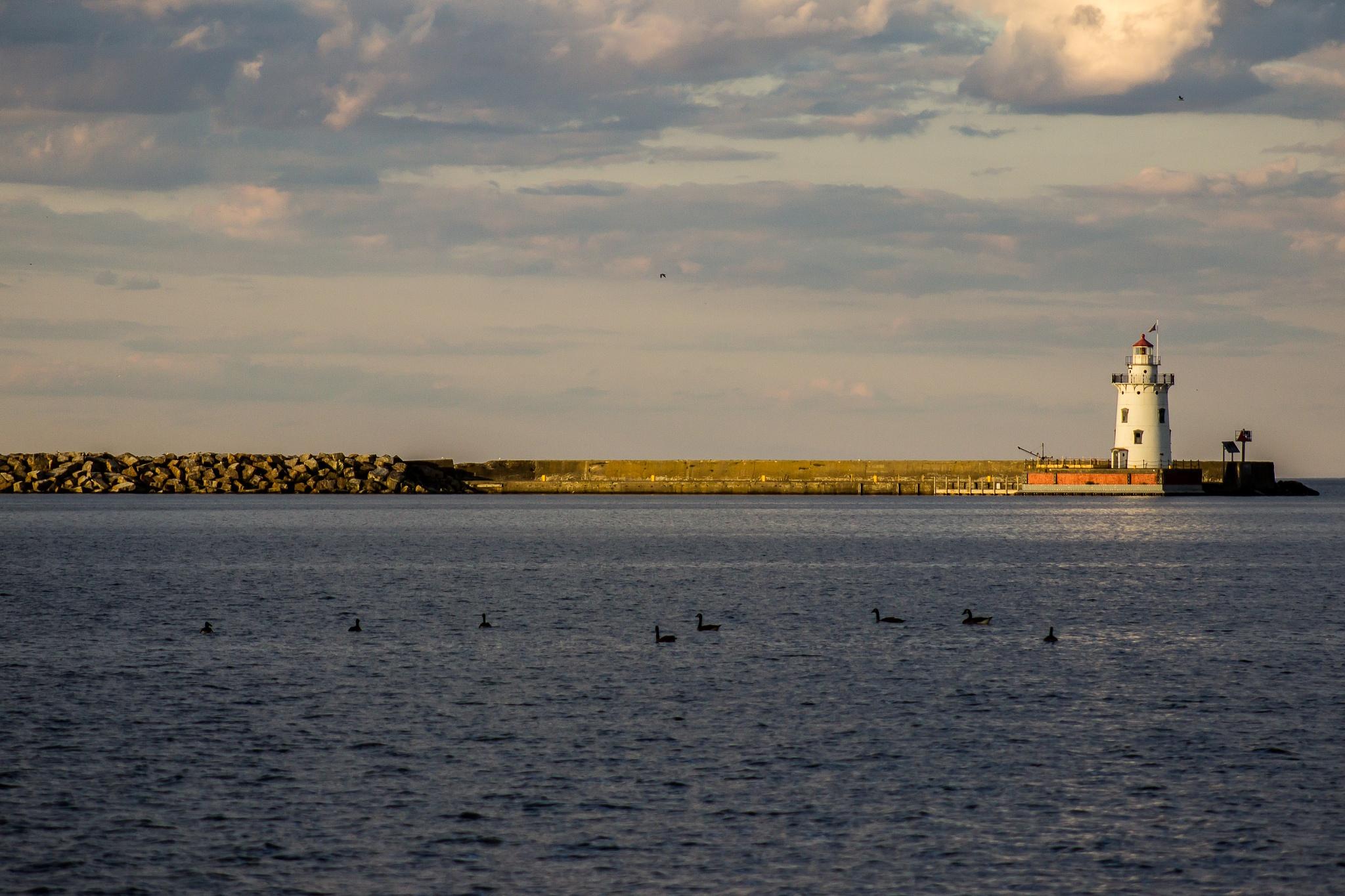 Harbor Beach Lighthouse by Angela Mead