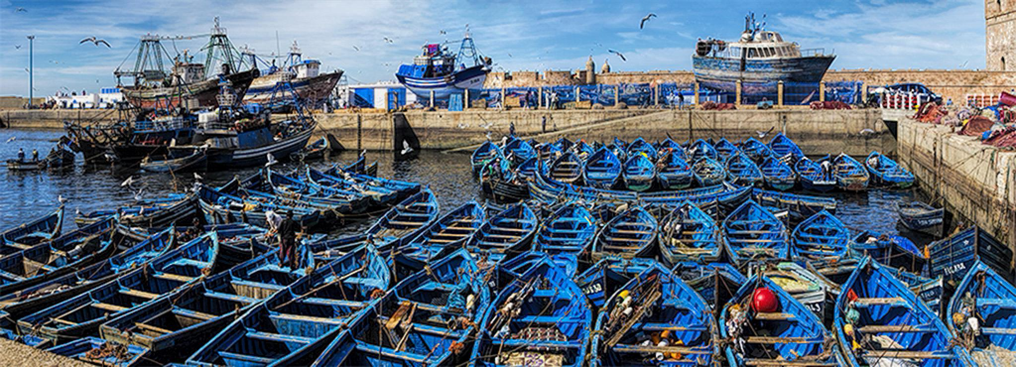 Essaouira habour, Morocco by lungaro1