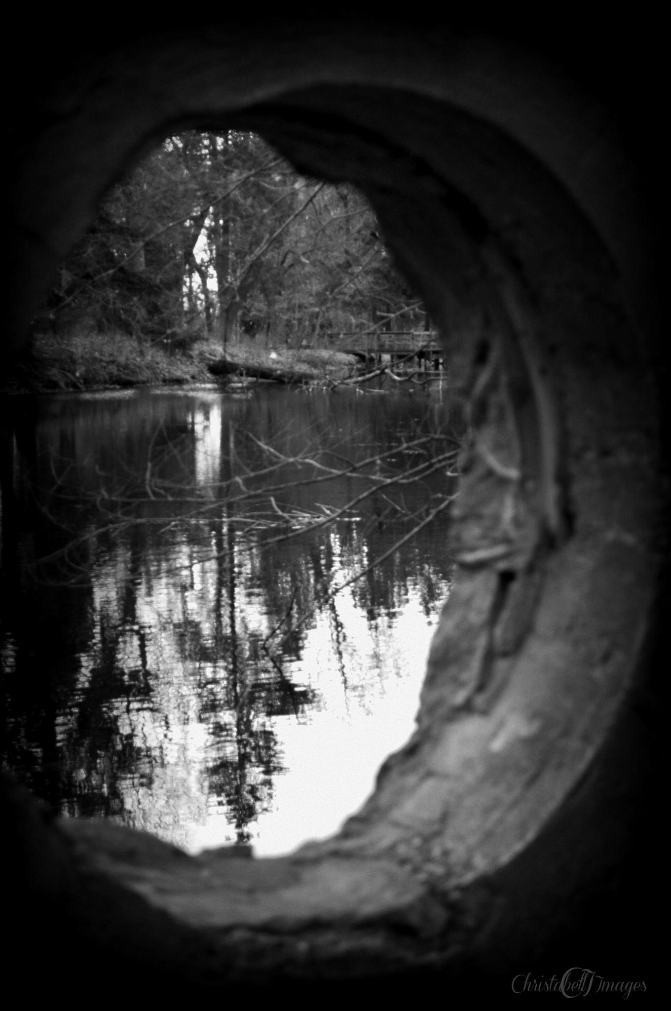Portal by Christabell