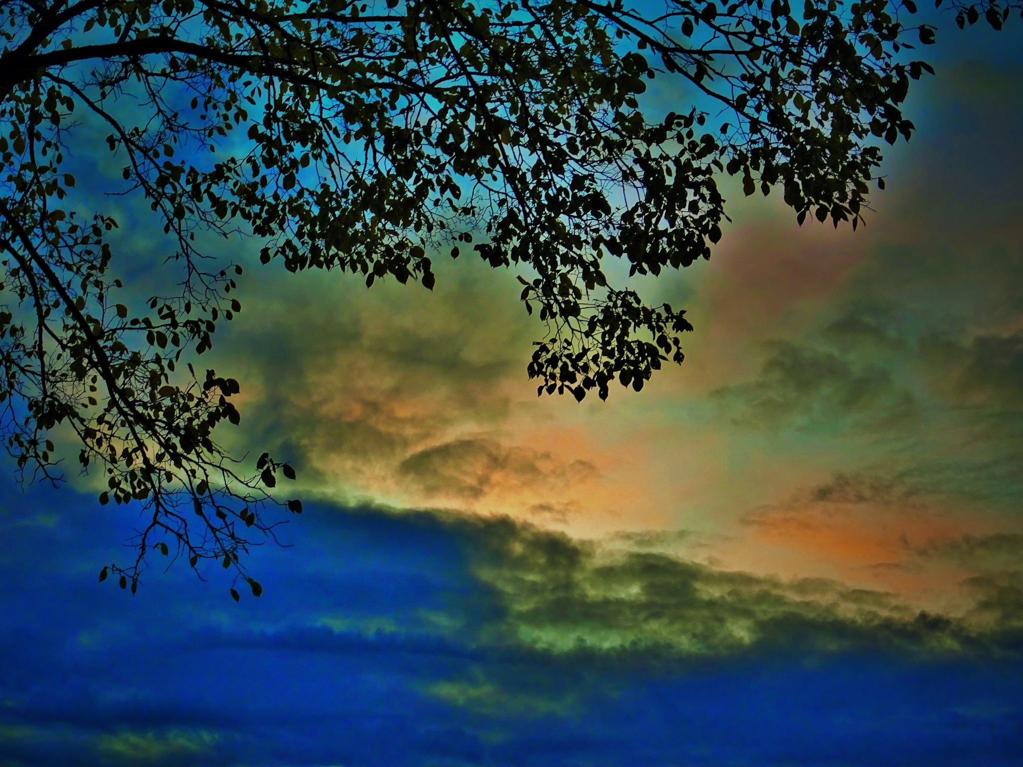 A sunset. by vita.tucaite