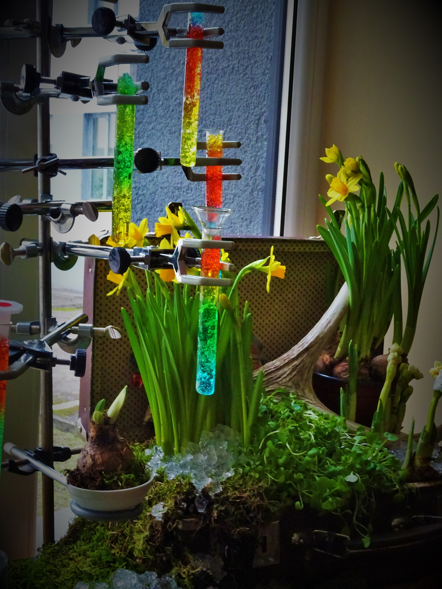 The chemist students` spring composition. by vita.tucaite