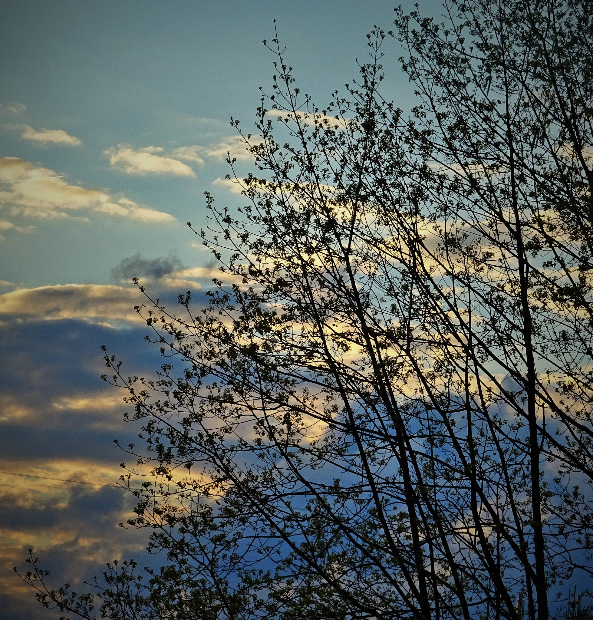 Evening clouds. by vita.tucaite