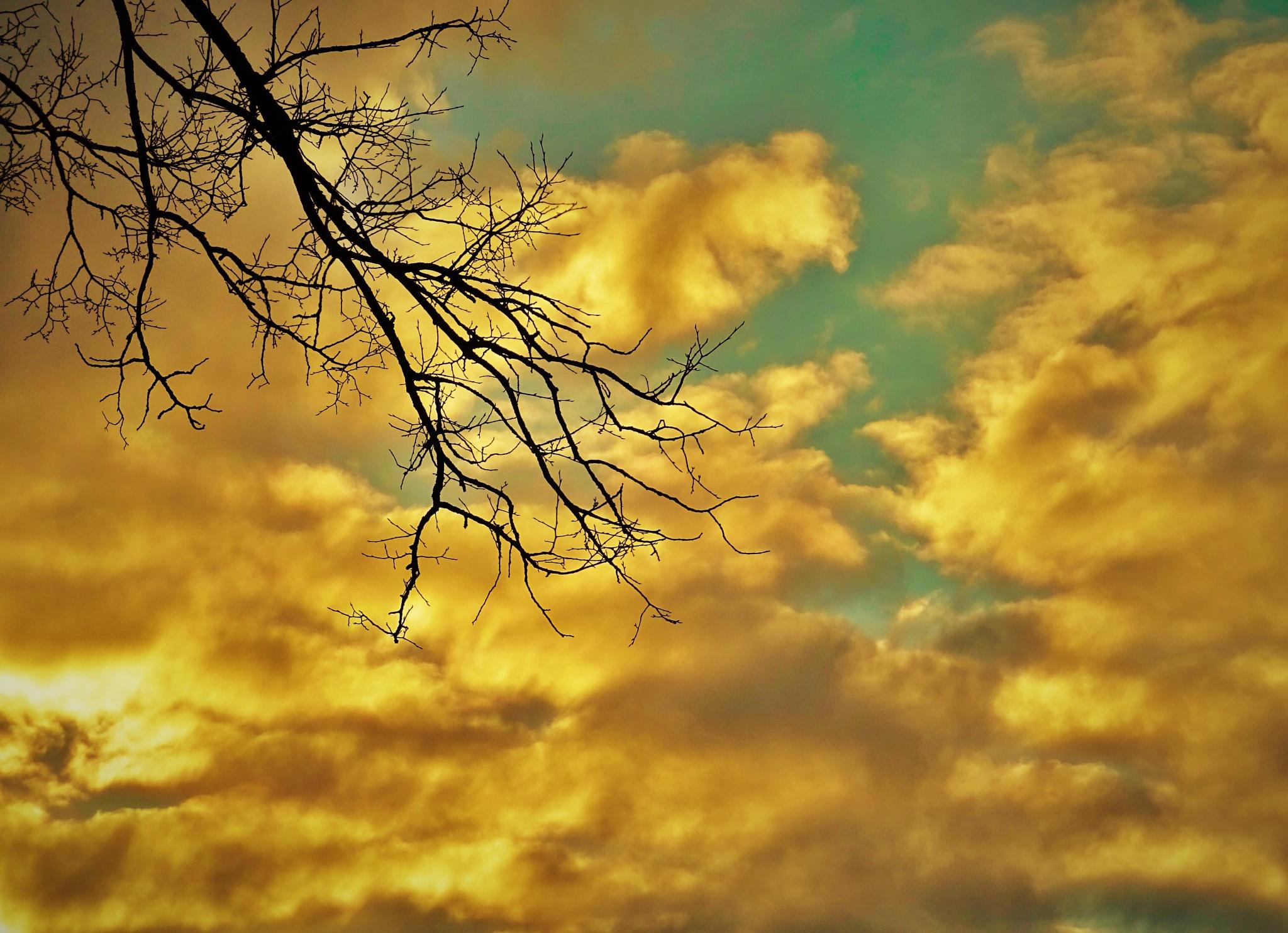 Evening behind my window. by vita.tucaite