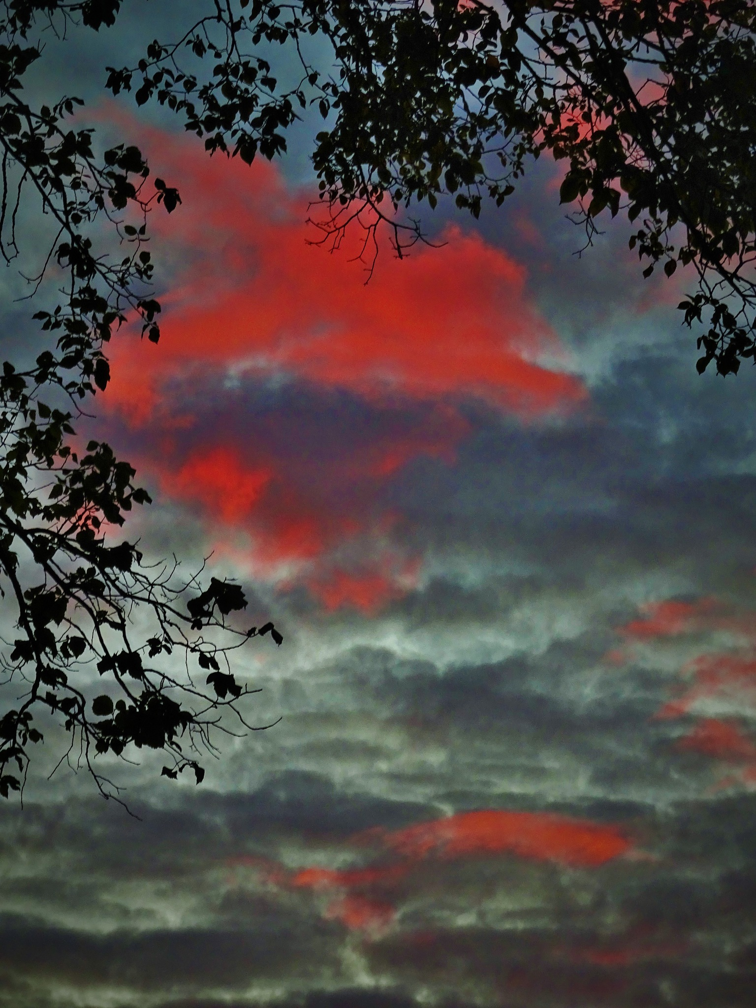 Sunset. by vita.tucaite