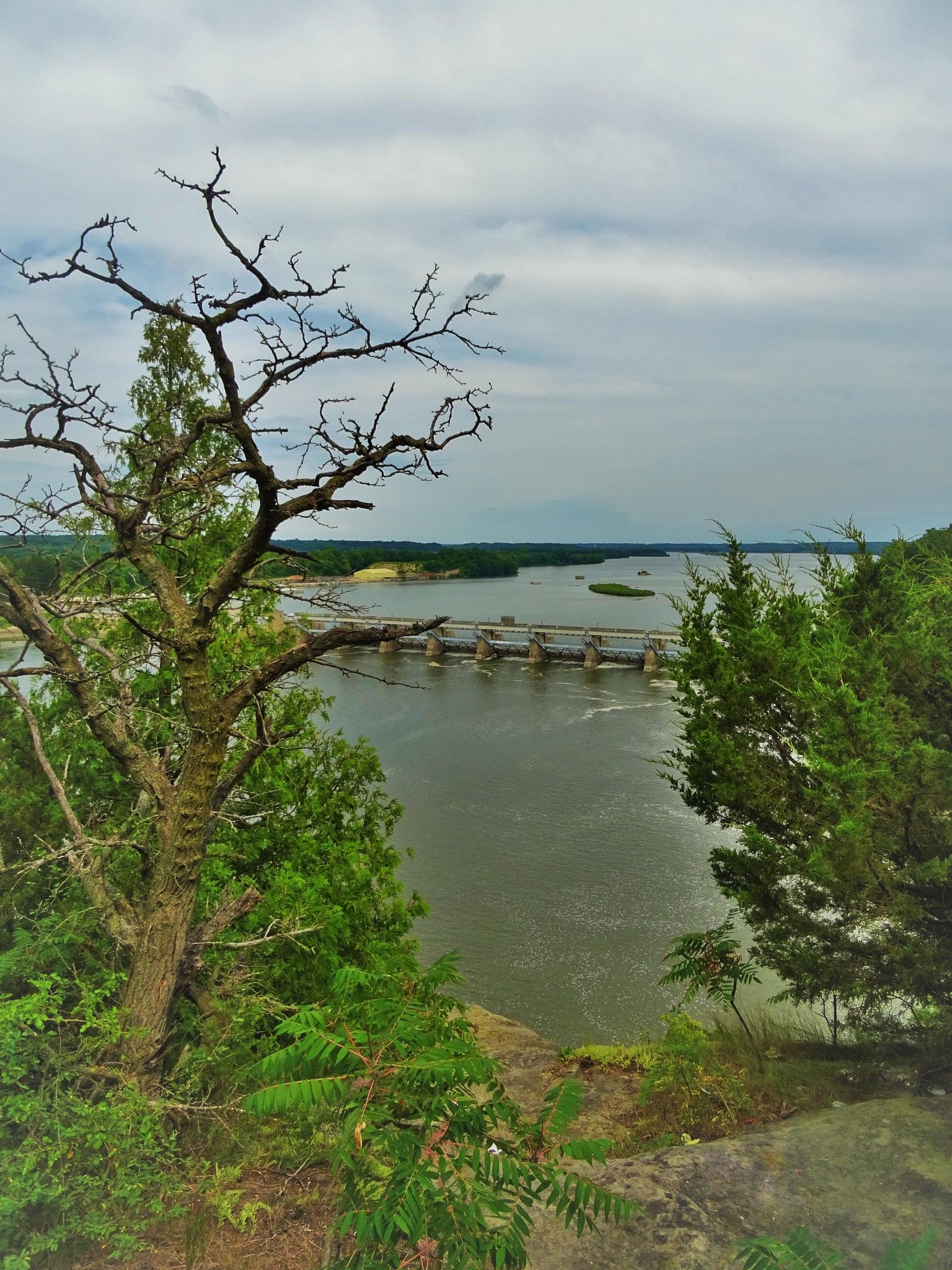 Illinois river. by vita.tucaite